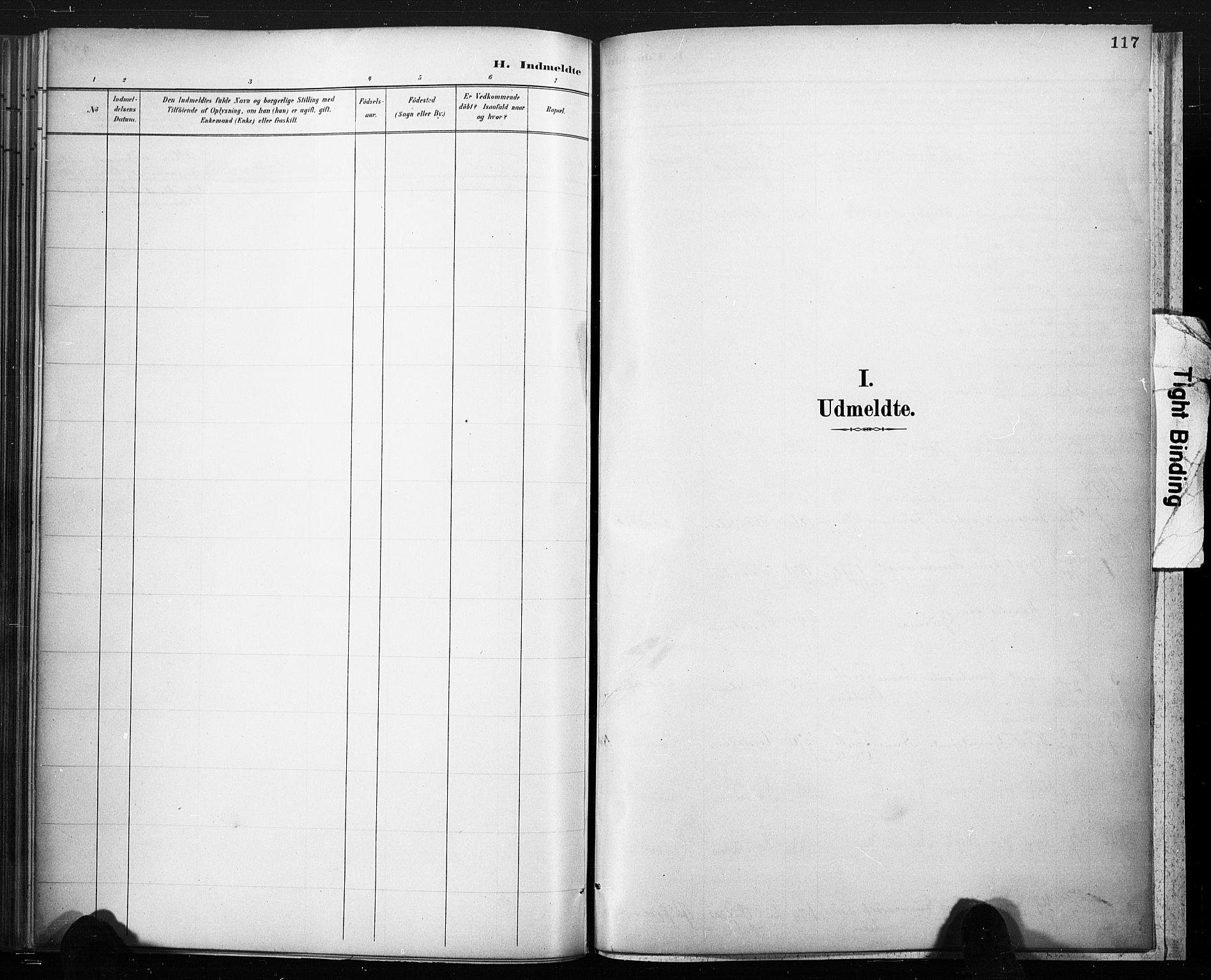 SAKO, Lårdal kirkebøker, F/Fc/L0002: Ministerialbok nr. III 2, 1887-1906, s. 117