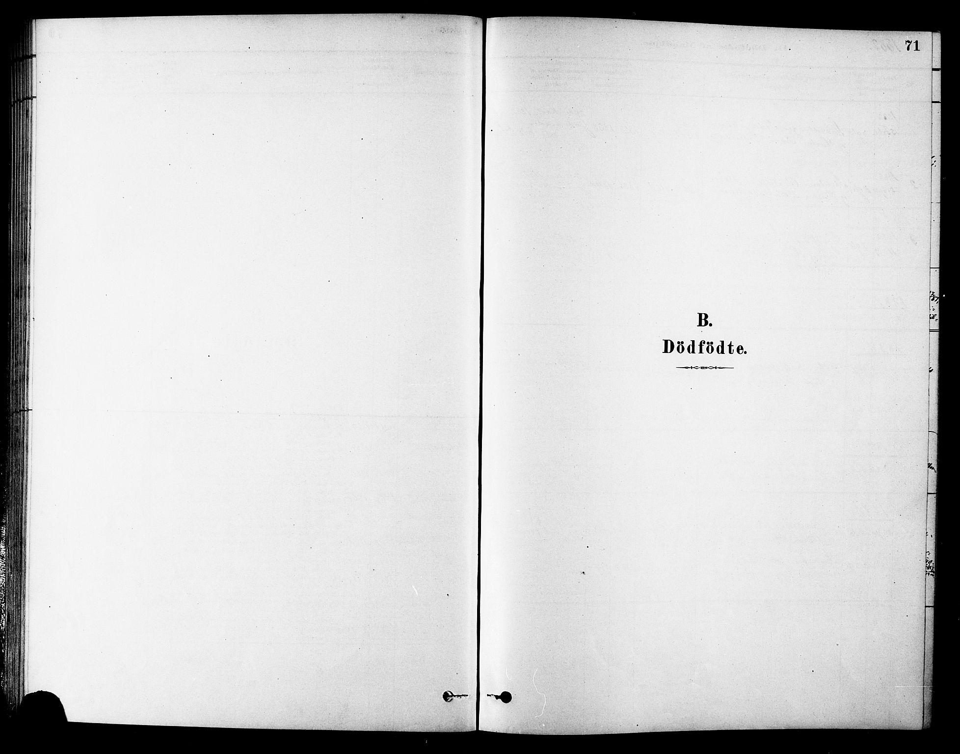 SAT, Ministerialprotokoller, klokkerbøker og fødselsregistre - Sør-Trøndelag, 686/L0983: Ministerialbok nr. 686A01, 1879-1890, s. 71