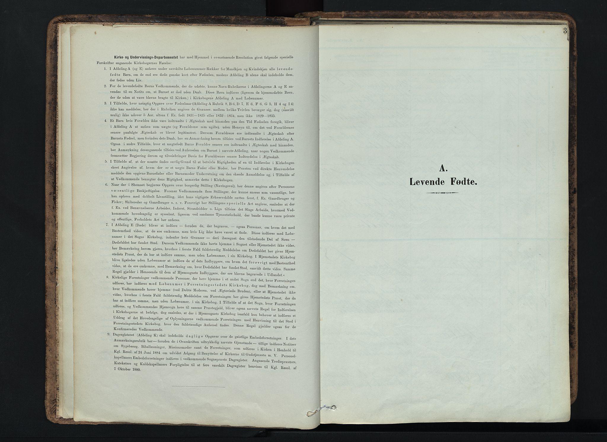 SAH, Vardal prestekontor, H/Ha/Haa/L0019: Ministerialbok nr. 19, 1893-1907, s. 3