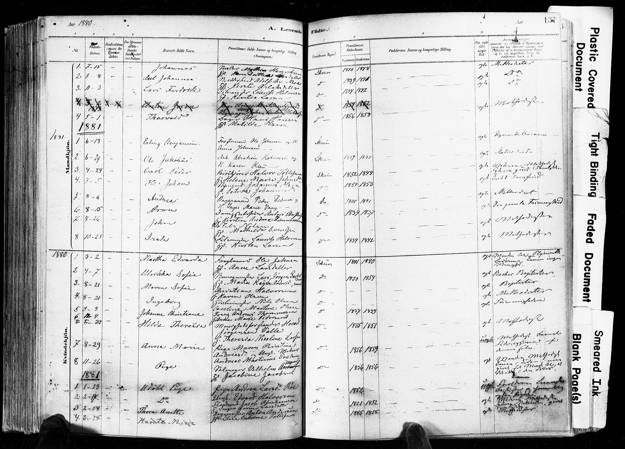 SAKO, Skien kirkebøker, F/Fa/L0009: Ministerialbok nr. 9, 1878-1890, s. 137