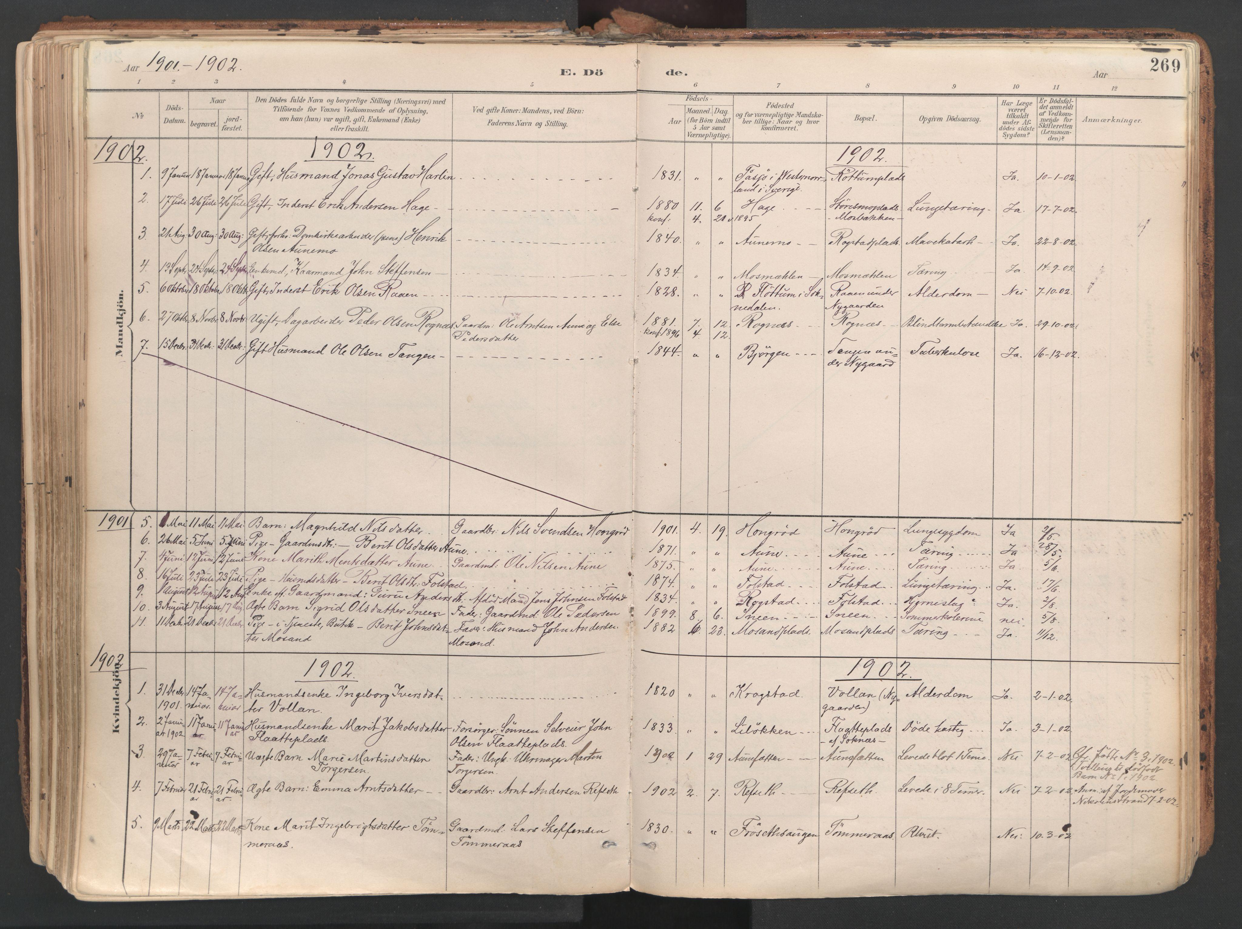 SAT, Ministerialprotokoller, klokkerbøker og fødselsregistre - Sør-Trøndelag, 687/L1004: Ministerialbok nr. 687A10, 1891-1923, s. 269