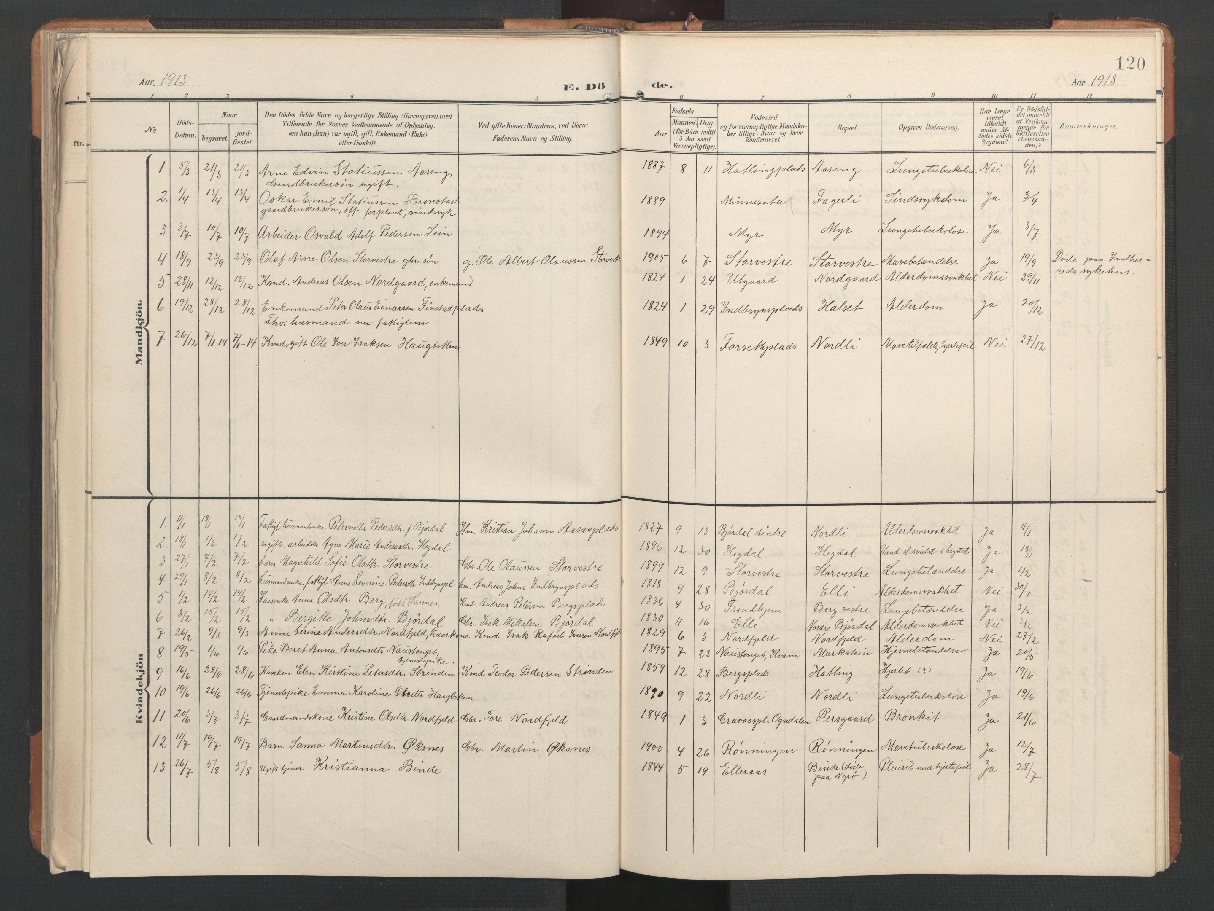 SAT, Ministerialprotokoller, klokkerbøker og fødselsregistre - Nord-Trøndelag, 746/L0455: Klokkerbok nr. 746C01, 1908-1933, s. 120
