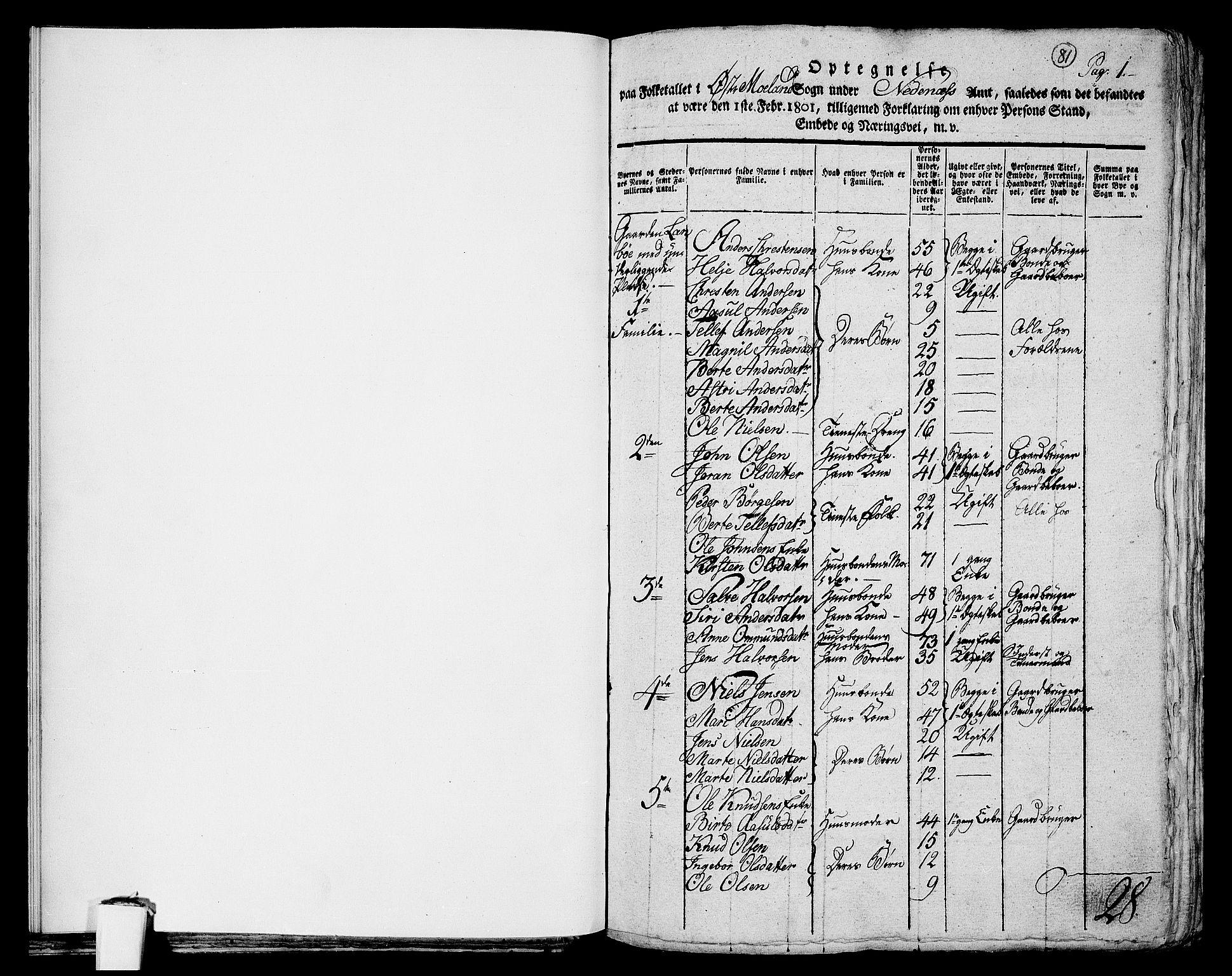 RA, Folketelling 1801 for 0918P Austre Moland prestegjeld, 1801, s. 81a