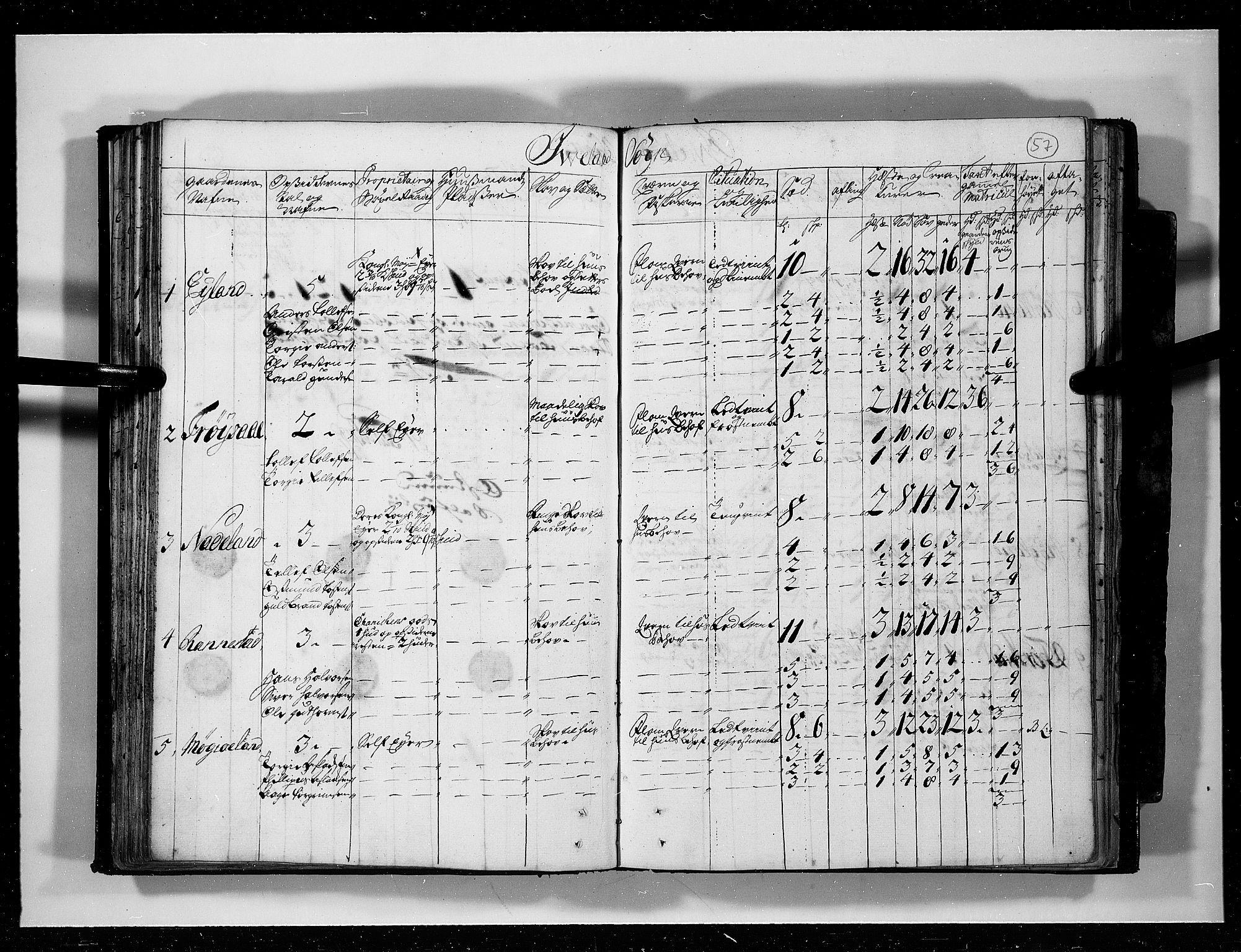 RA, Rentekammeret inntil 1814, Realistisk ordnet avdeling, N/Nb/Nbf/L0125: Råbyggelag eksaminasjonsprotokoll, 1723, s. 56b-57a