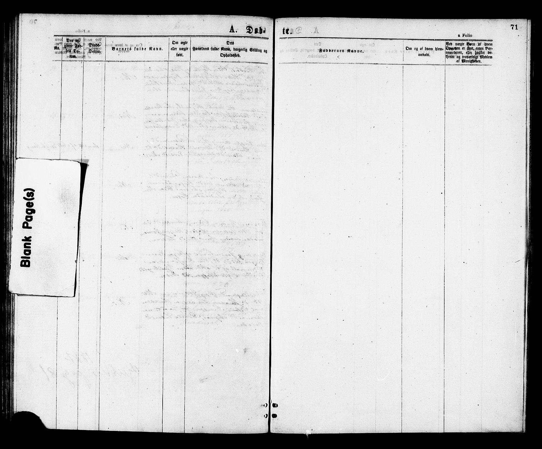 SAT, Ministerialprotokoller, klokkerbøker og fødselsregistre - Nord-Trøndelag, 713/L0118: Ministerialbok nr. 713A08 /2, 1875-1877, s. 71