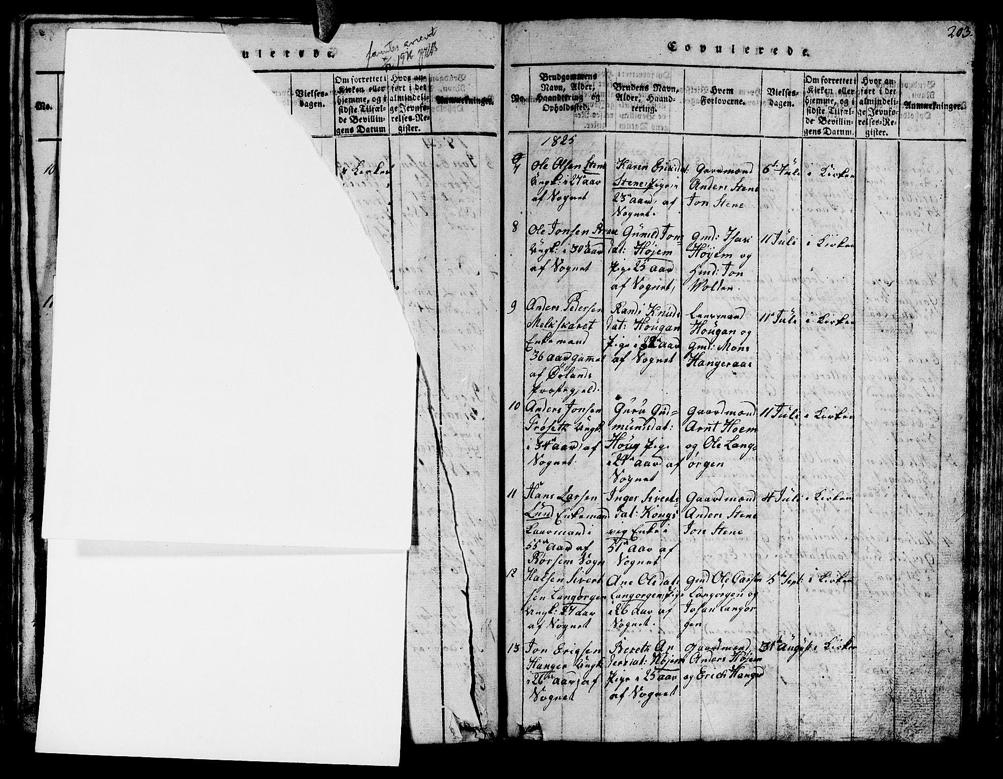 SAT, Ministerialprotokoller, klokkerbøker og fødselsregistre - Sør-Trøndelag, 612/L0385: Klokkerbok nr. 612C01, 1816-1845, s. 203