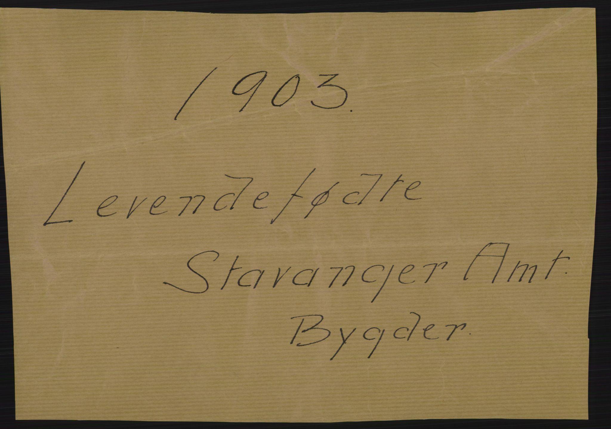 RA, Statistisk sentralbyrå, Sosiodemografiske emner, Befolkning, D/Df/Dfa/Dfaa/L0012: Stavanger amt: Fødte, gifte, døde, 1903