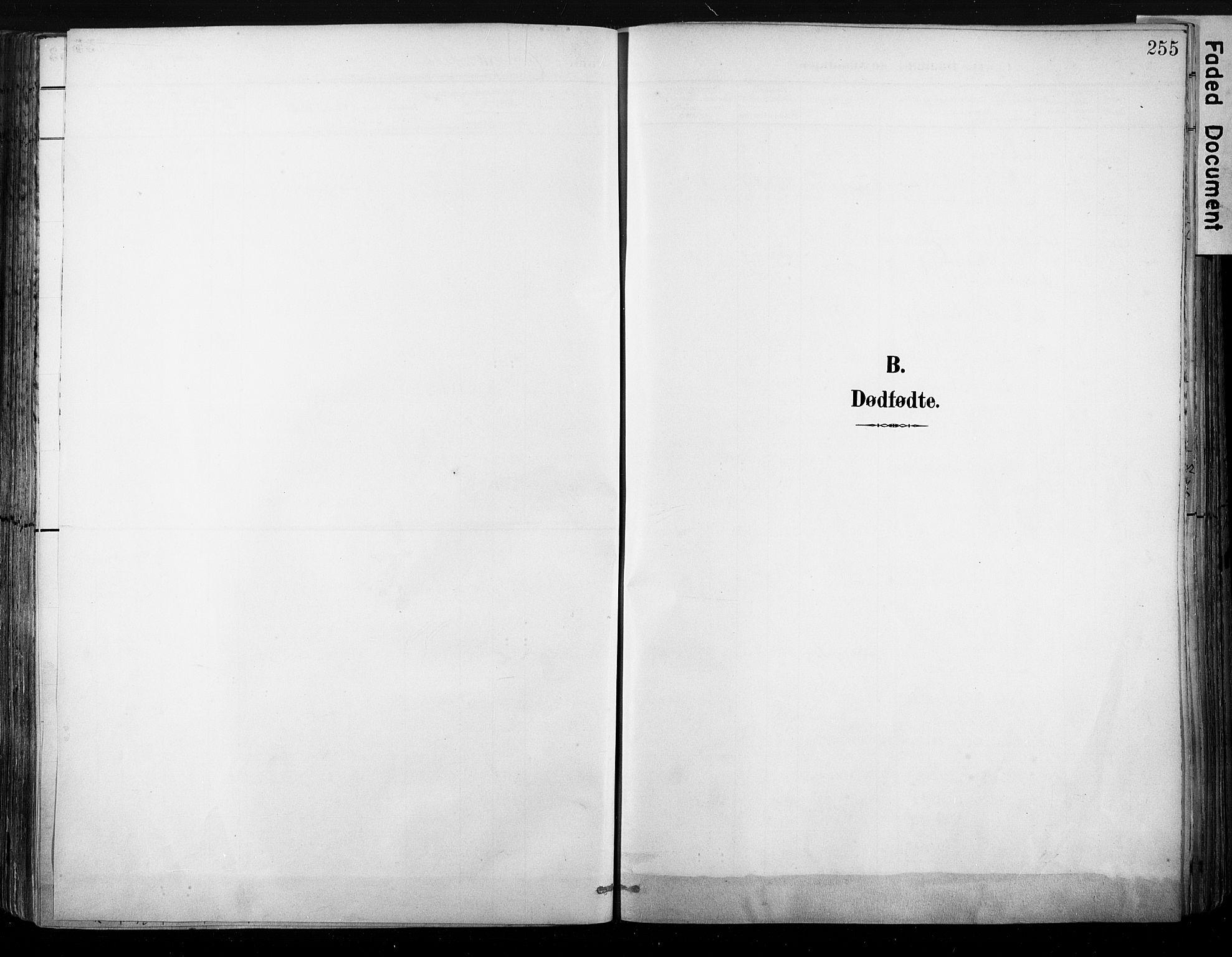 SAKO, Strømsø kirkebøker, G/Ga/L0003: Klokkerbok nr. 3, 1894-1904, s. 255
