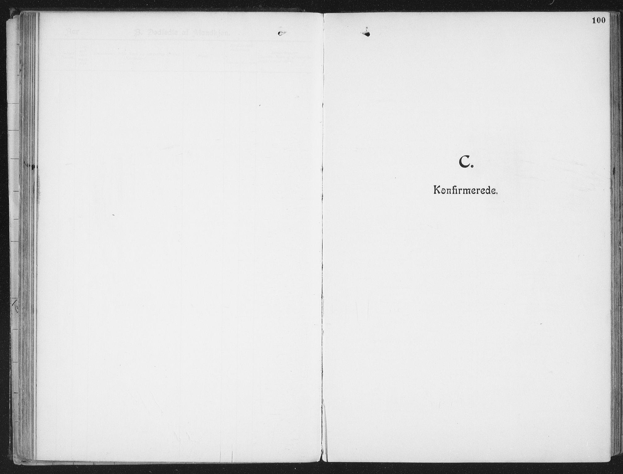 SAT, Ministerialprotokoller, klokkerbøker og fødselsregistre - Nordland, 804/L0081: Ministerialbok nr. 804A02, 1901-1915, s. 100