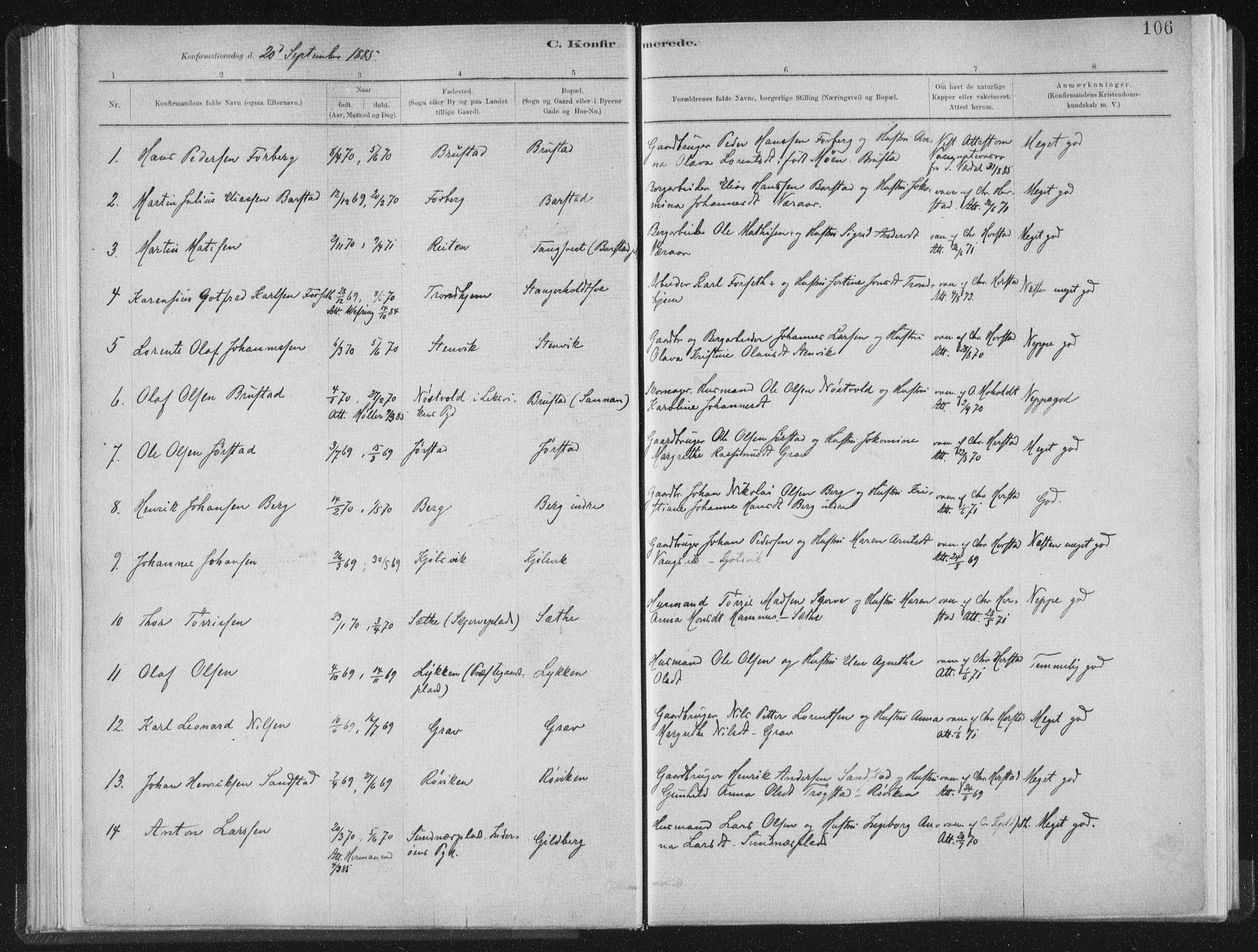 SAT, Ministerialprotokoller, klokkerbøker og fødselsregistre - Nord-Trøndelag, 722/L0220: Ministerialbok nr. 722A07, 1881-1908, s. 106