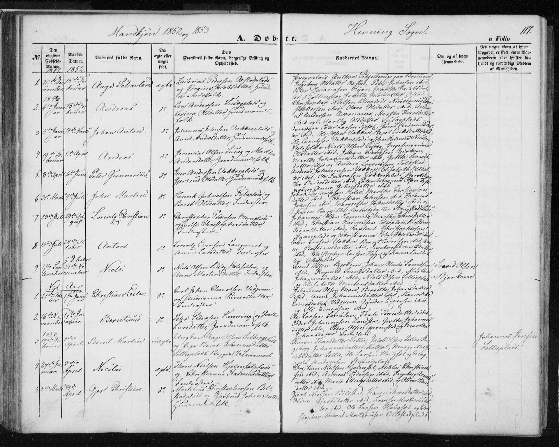 SAT, Ministerialprotokoller, klokkerbøker og fødselsregistre - Nord-Trøndelag, 735/L0342: Ministerialbok nr. 735A07 /3, 1849-1862, s. 117
