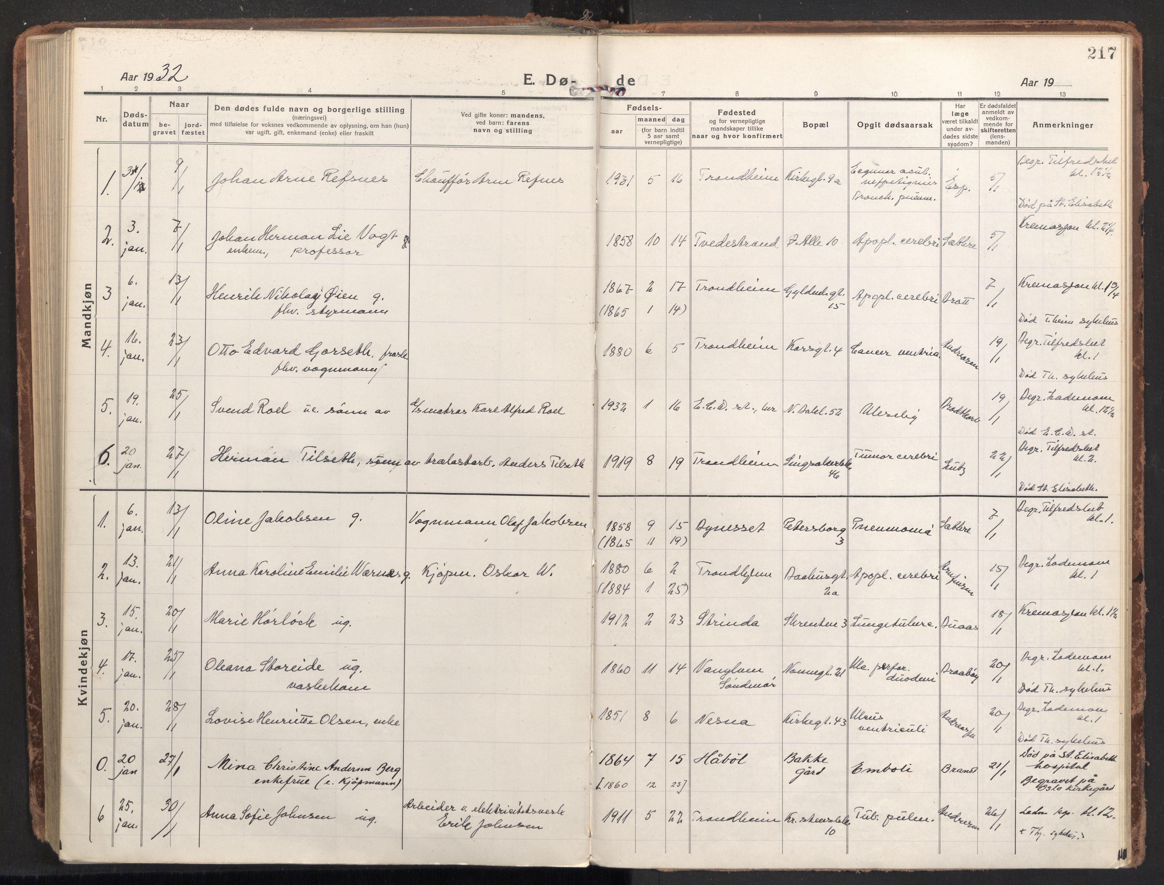 SAT, Ministerialprotokoller, klokkerbøker og fødselsregistre - Sør-Trøndelag, 604/L0207: Ministerialbok nr. 604A27, 1917-1933, s. 217