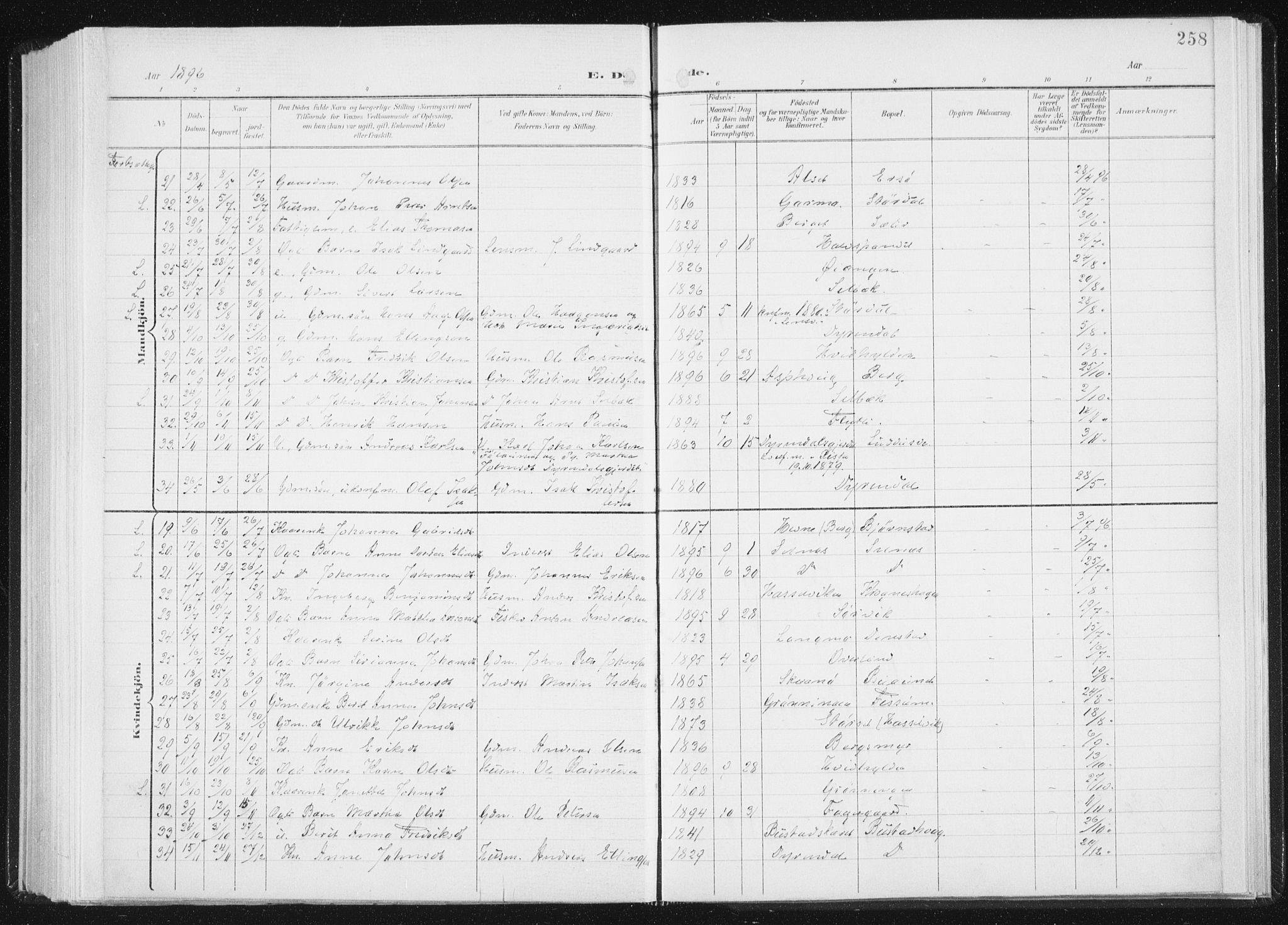 SAT, Ministerialprotokoller, klokkerbøker og fødselsregistre - Sør-Trøndelag, 647/L0635: Ministerialbok nr. 647A02, 1896-1911, s. 258