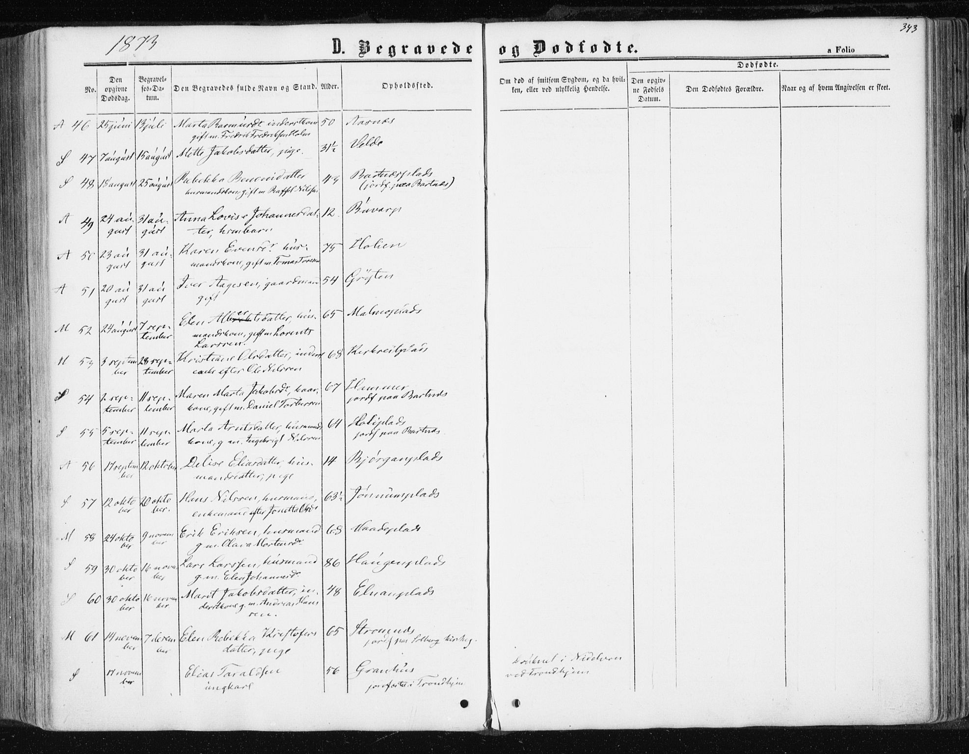 SAT, Ministerialprotokoller, klokkerbøker og fødselsregistre - Nord-Trøndelag, 741/L0394: Ministerialbok nr. 741A08, 1864-1877, s. 343
