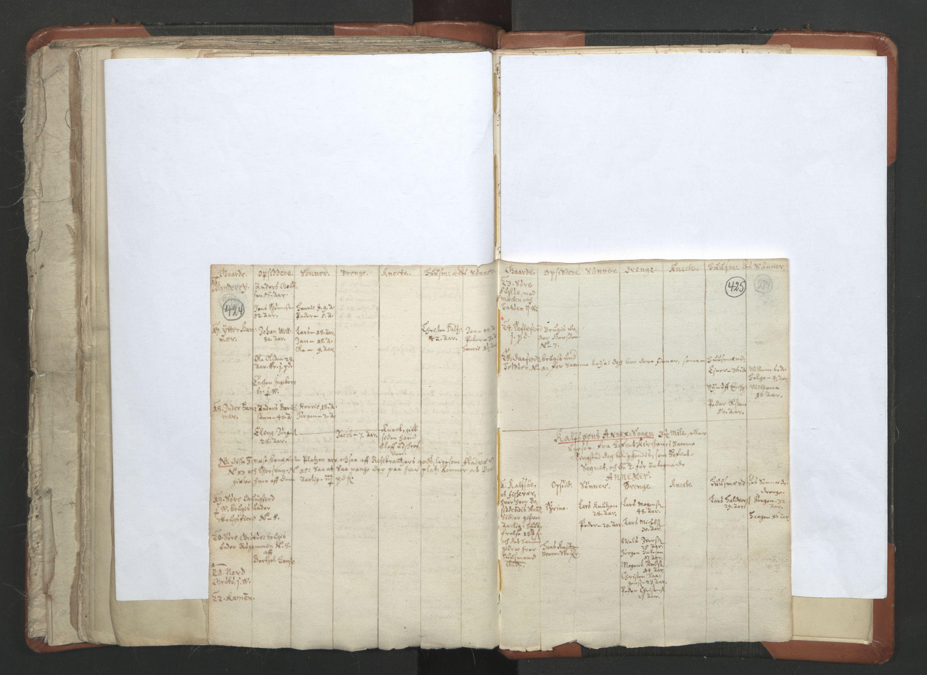 RA, Sogneprestenes manntall 1664-1666, nr. 36: Lofoten og Vesterålen prosti, Senja prosti og Troms prosti, 1664-1666, s. 424-425