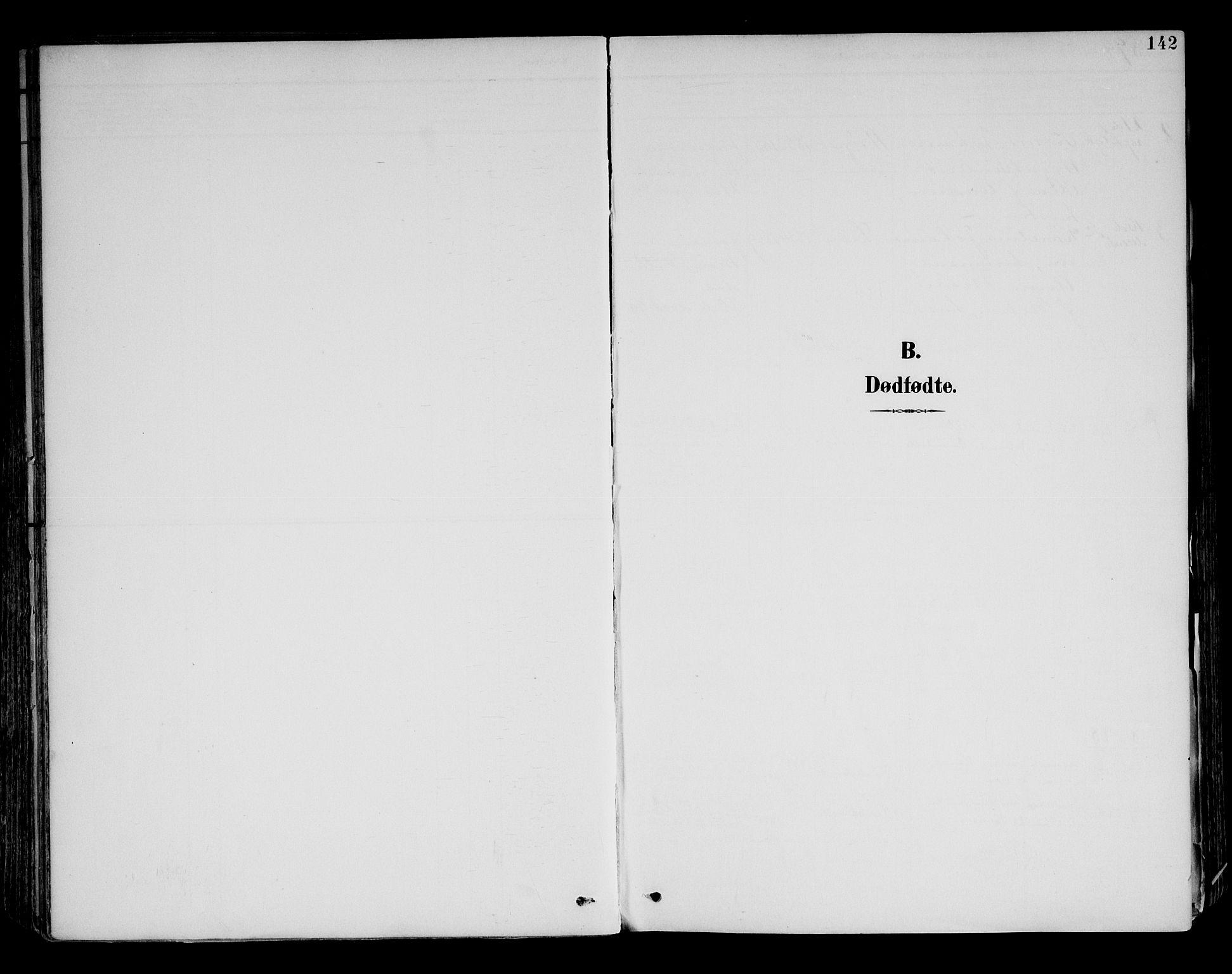SAH, Brandval prestekontor, H/Ha/Haa/L0003: Ministerialbok nr. 3, 1894-1909, s. 142