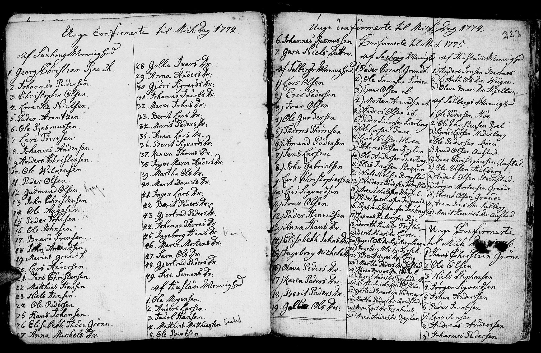 SAT, Ministerialprotokoller, klokkerbøker og fødselsregistre - Nord-Trøndelag, 730/L0273: Ministerialbok nr. 730A02, 1762-1802, s. 223