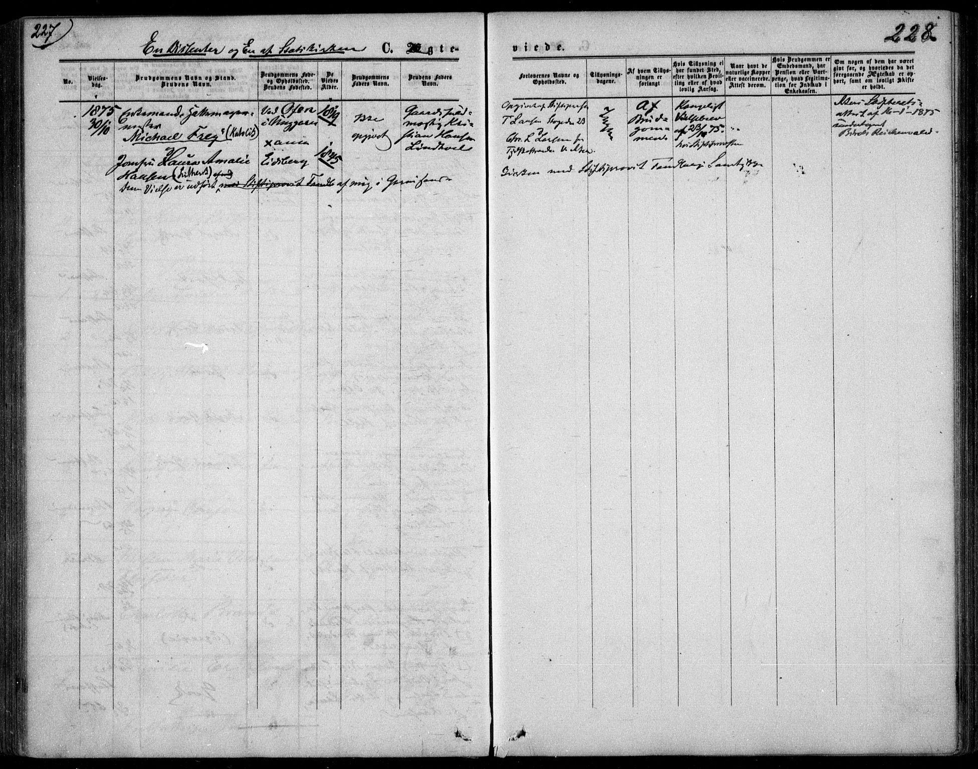 SAO, Garnisonsmenigheten Kirkebøker, F/Fa/L0011: Ministerialbok nr. 11, 1870-1880, s. 228