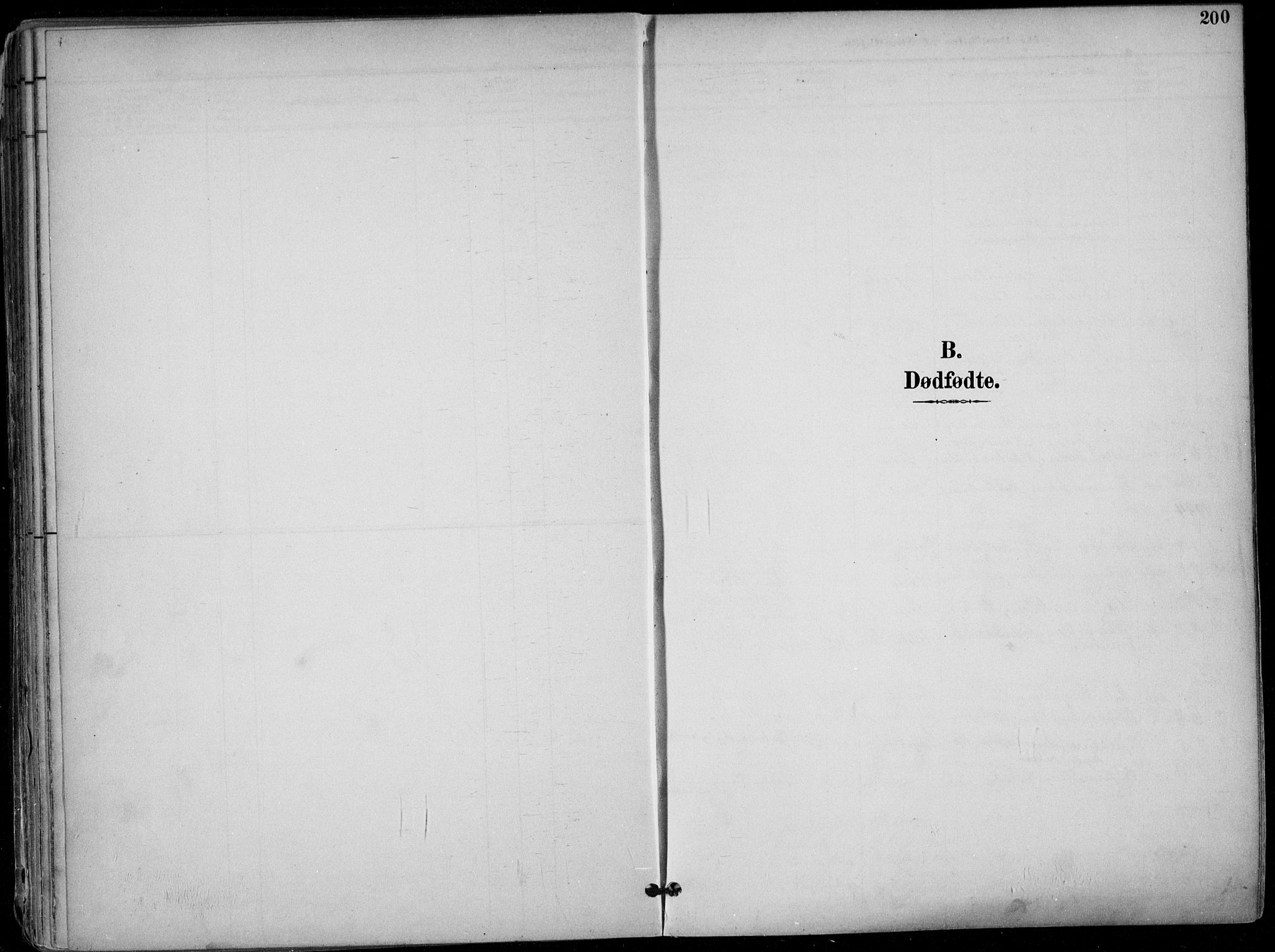 SAKO, Skien kirkebøker, F/Fa/L0010: Ministerialbok nr. 10, 1891-1899, s. 200