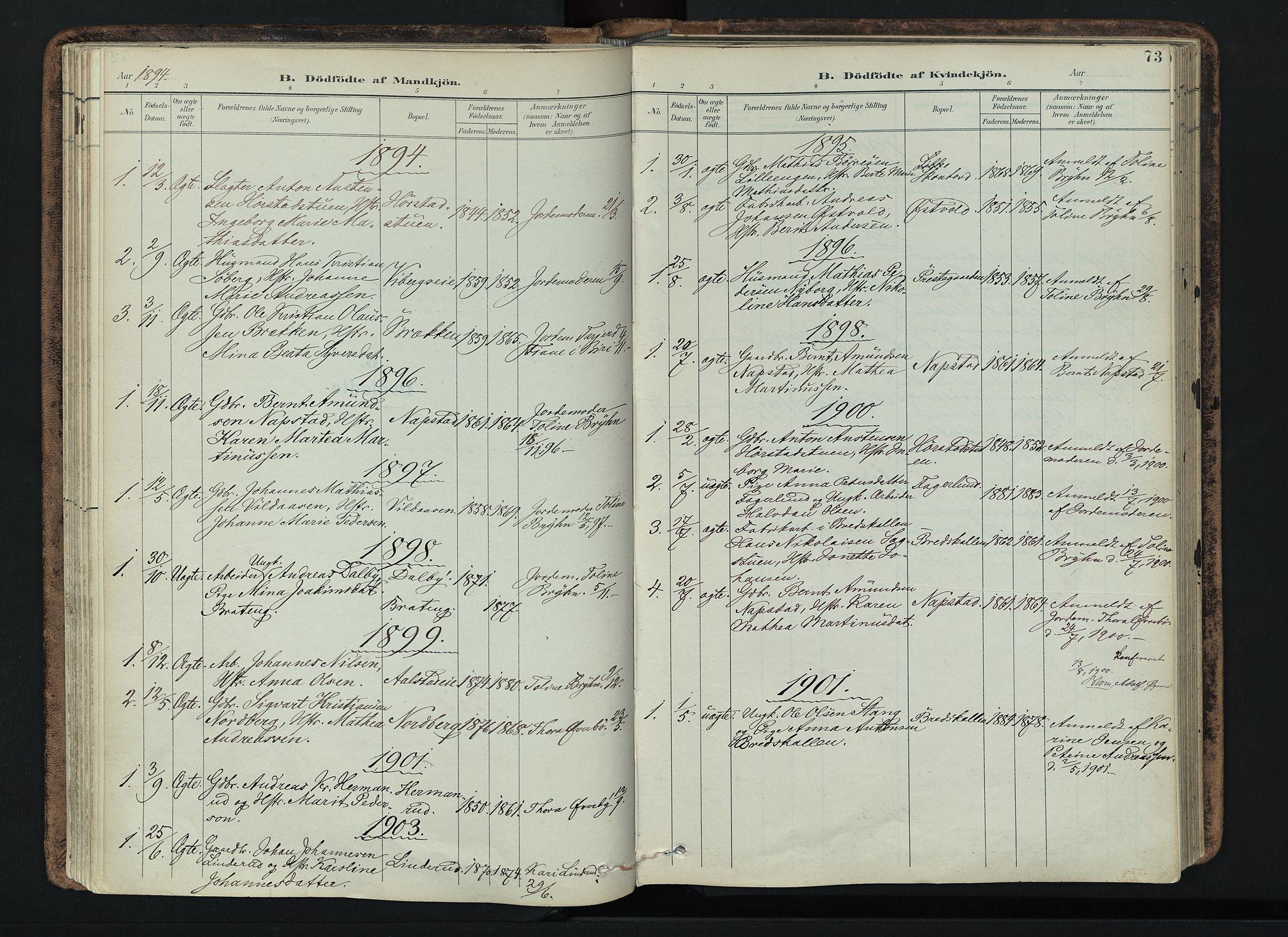 SAH, Vardal prestekontor, H/Ha/Haa/L0019: Ministerialbok nr. 19, 1893-1907, s. 73