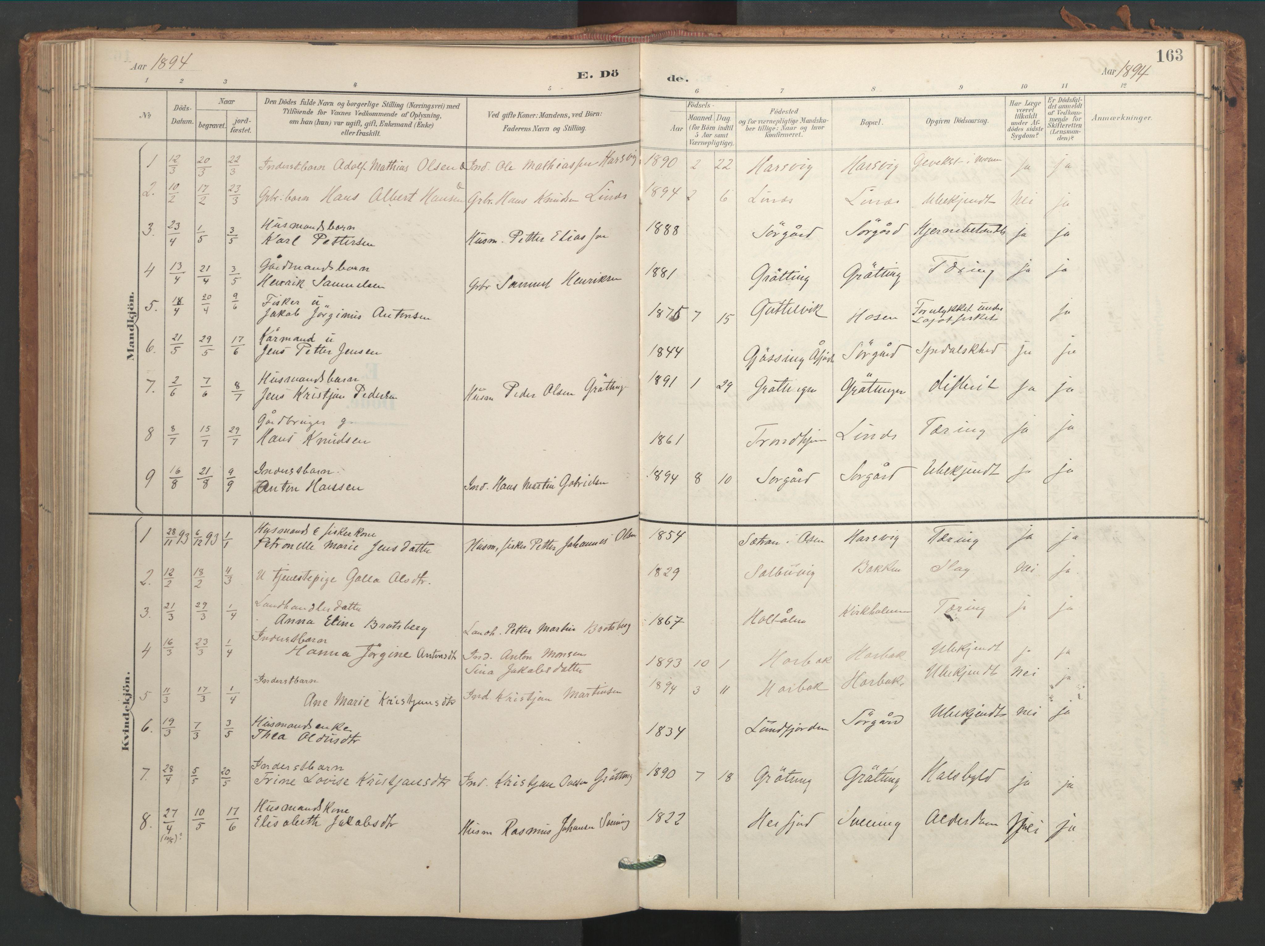 SAT, Ministerialprotokoller, klokkerbøker og fødselsregistre - Sør-Trøndelag, 656/L0693: Ministerialbok nr. 656A02, 1894-1913, s. 163