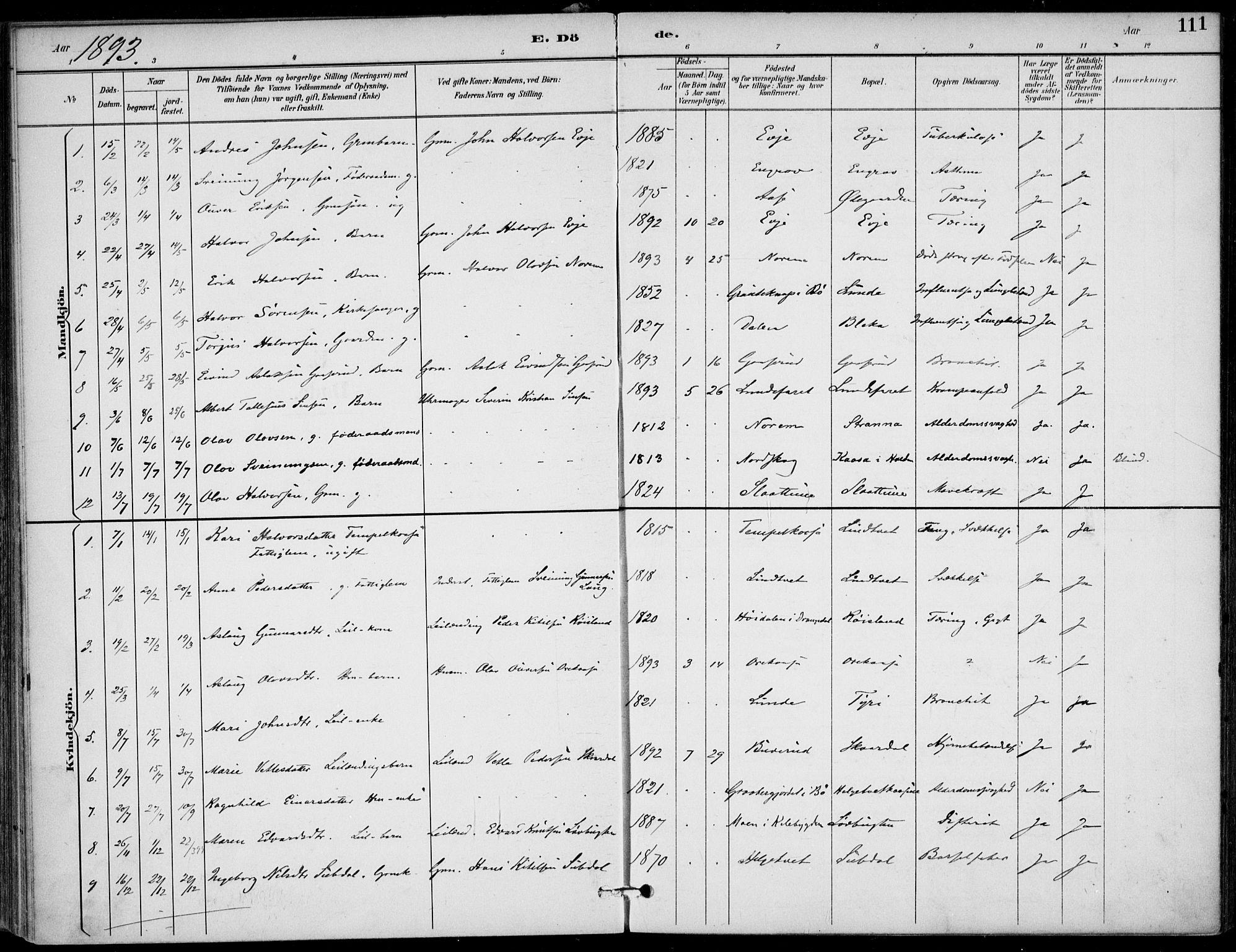 SAKO, Lunde kirkebøker, F/Fa/L0003: Ministerialbok nr. I 3, 1893-1902, s. 111