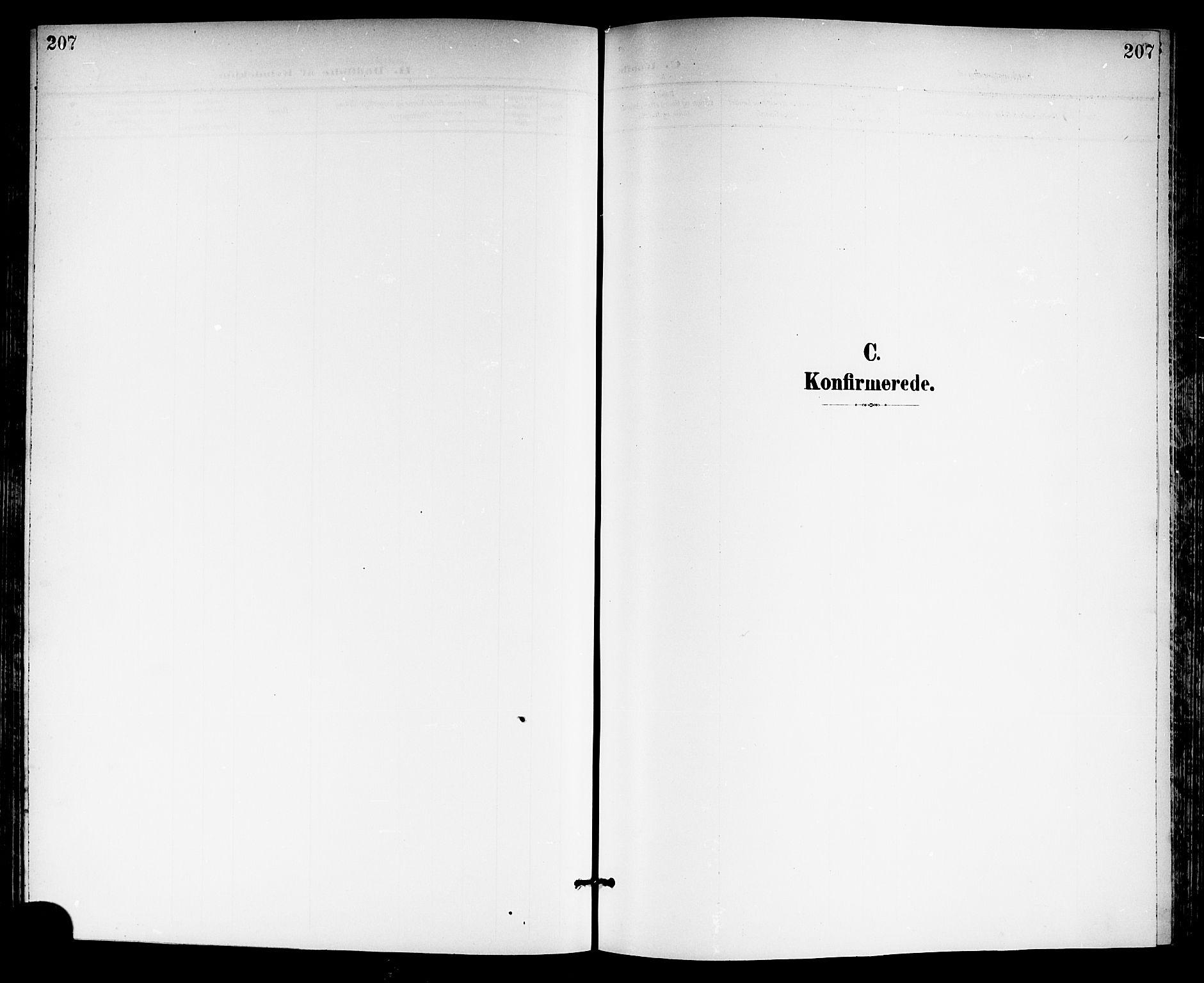 SAKO, Gjerpen kirkebøker, G/Ga/L0003: Klokkerbok nr. I 3, 1901-1919, s. 207