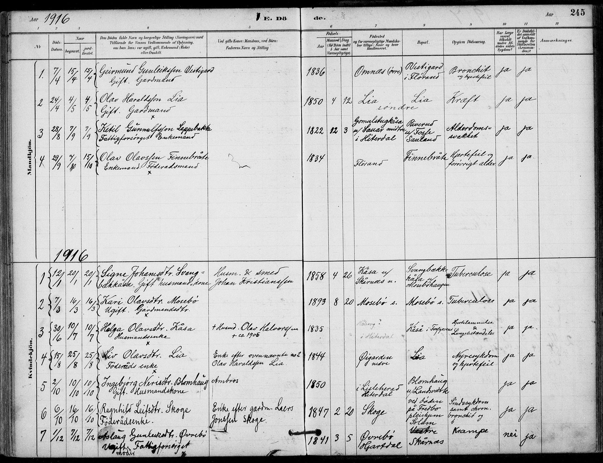 SAKO, Hjartdal kirkebøker, F/Fb/L0002: Ministerialbok nr. II 2, 1880-1932, s. 245