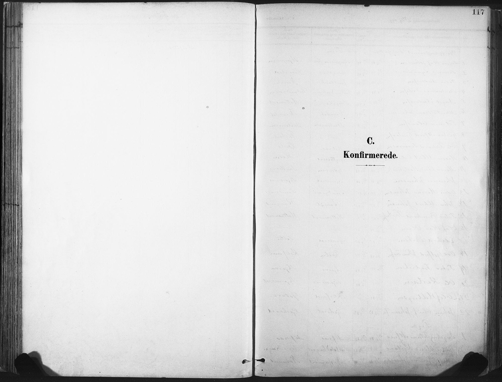 SAT, Ministerialprotokoller, klokkerbøker og fødselsregistre - Nord-Trøndelag, 717/L0162: Ministerialbok nr. 717A12, 1898-1923, s. 117