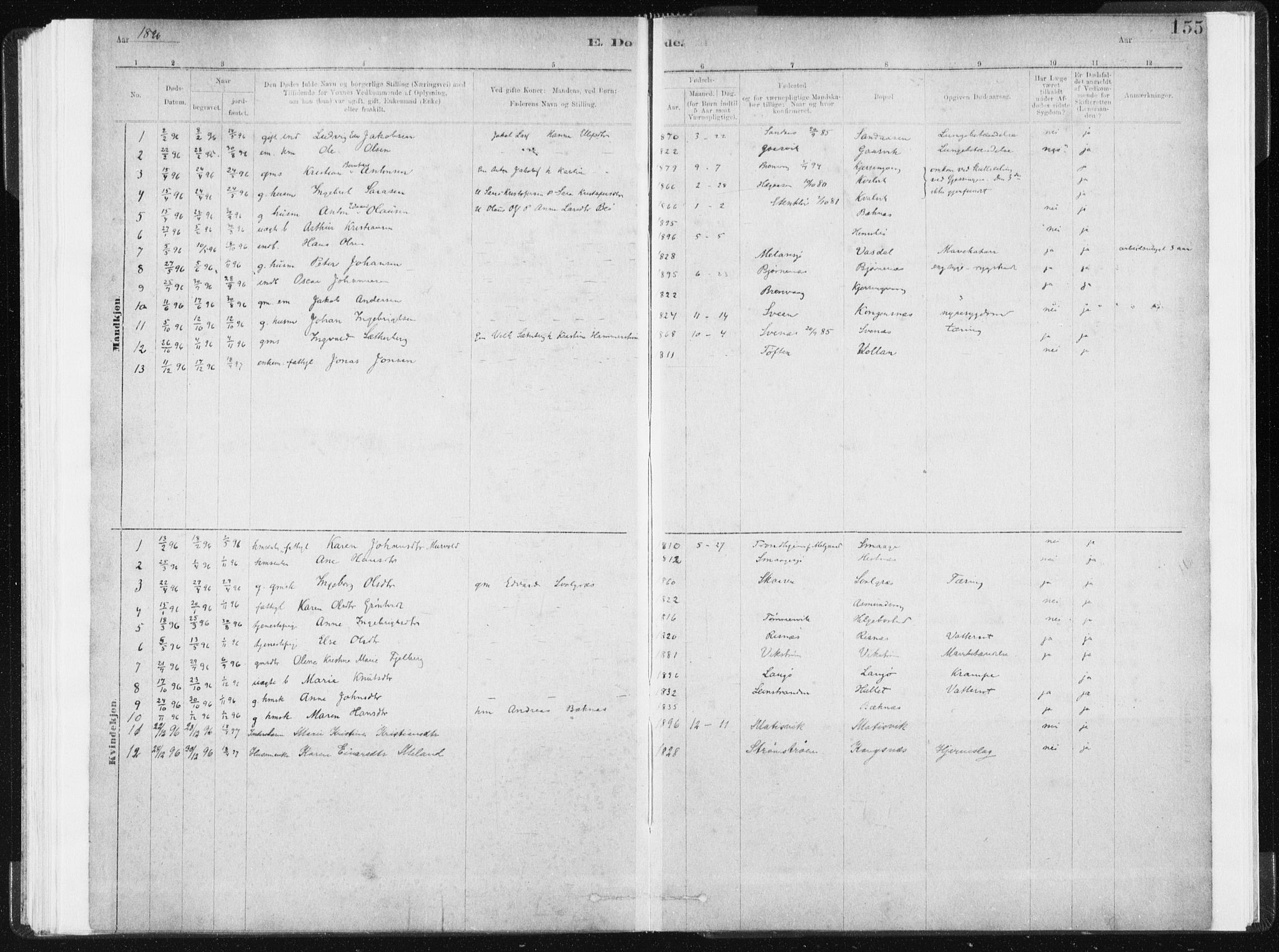 SAT, Ministerialprotokoller, klokkerbøker og fødselsregistre - Sør-Trøndelag, 634/L0533: Ministerialbok nr. 634A09, 1882-1901, s. 155
