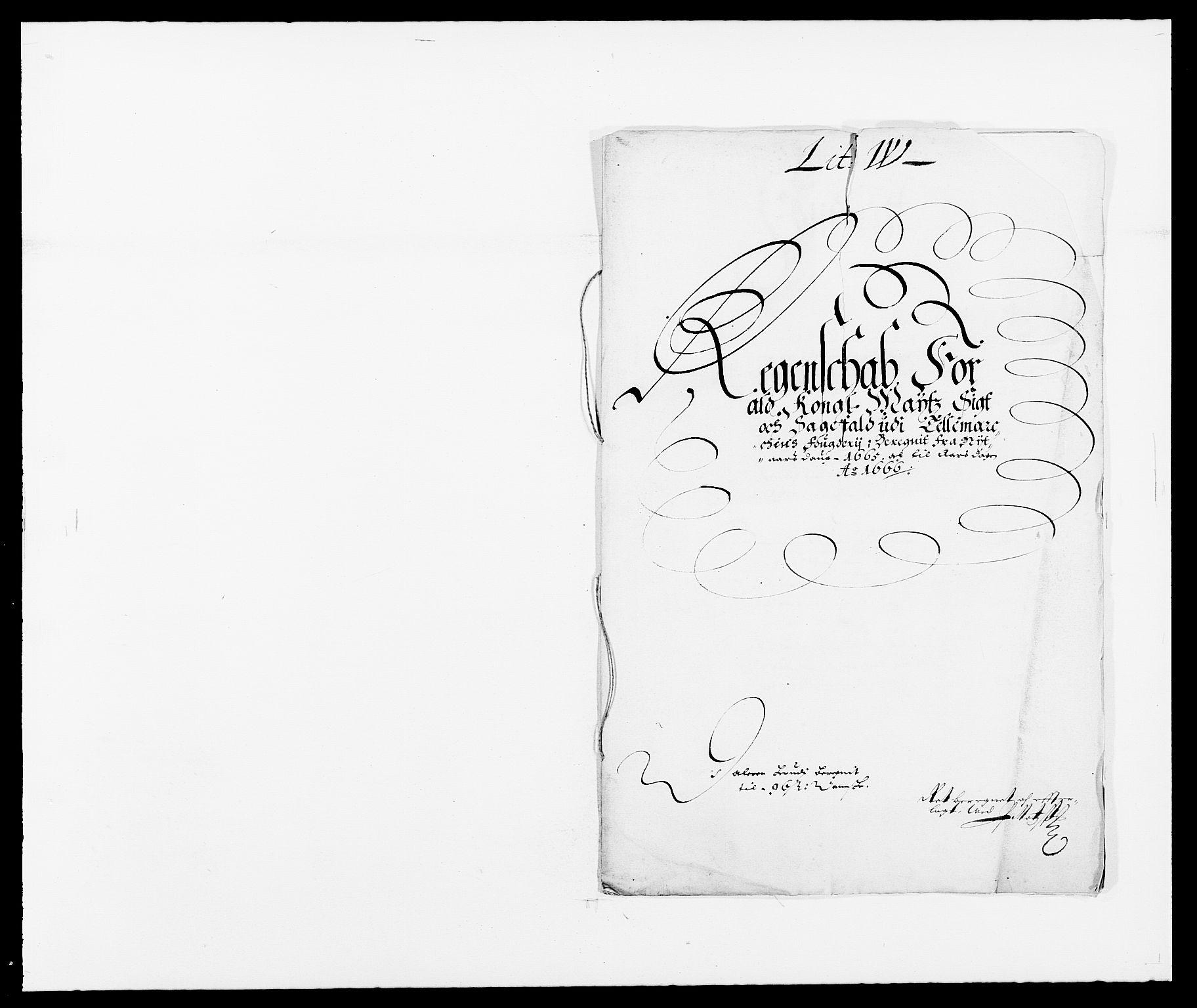 RA, Rentekammeret inntil 1814, Reviderte regnskaper, Fogderegnskap, R35/L2056: Fogderegnskap Øvre og Nedre Telemark, 1665, s. 250