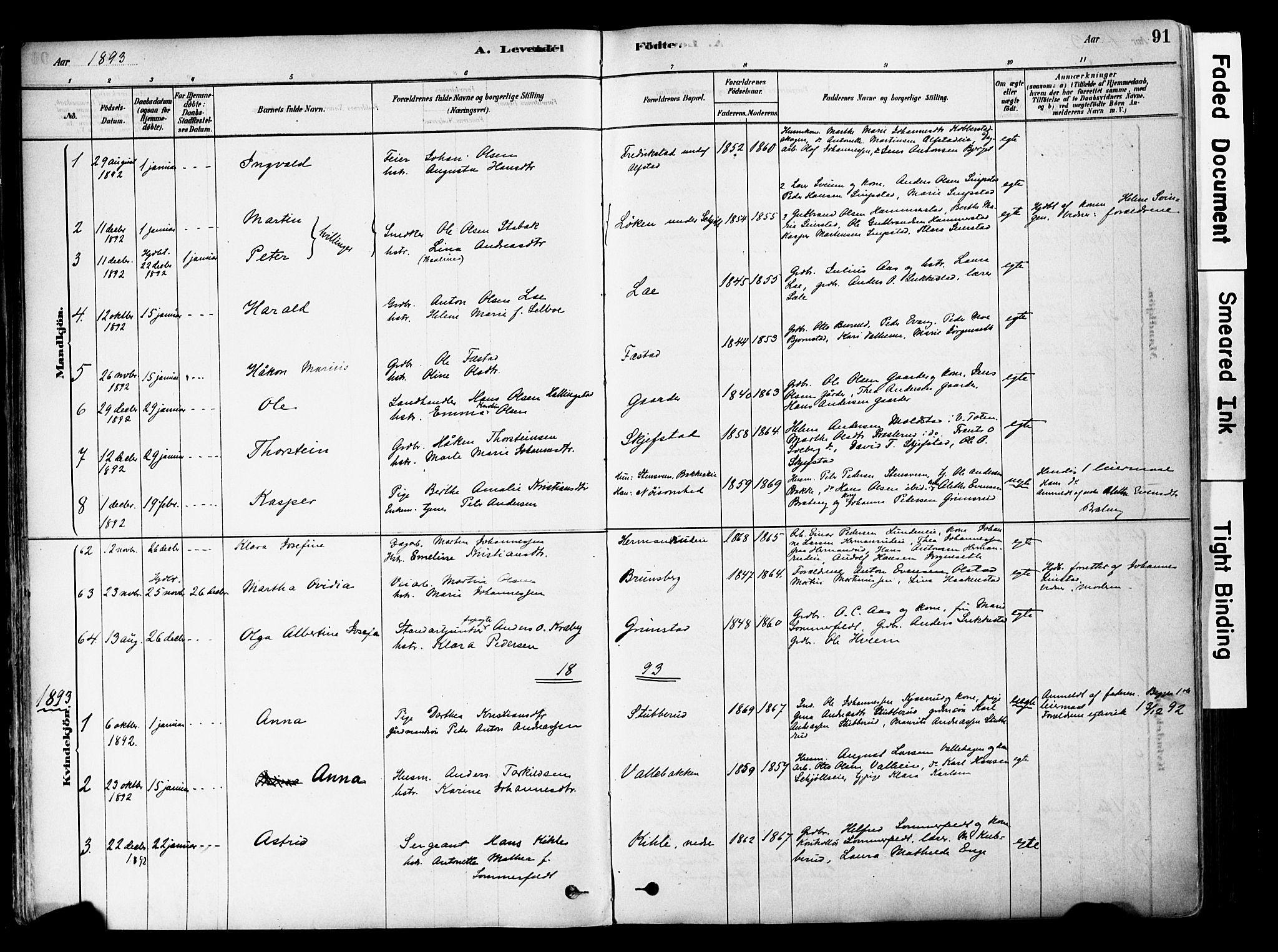 SAH, Østre Toten prestekontor, Ministerialbok nr. 6 /1, 1878-1896, s. 91