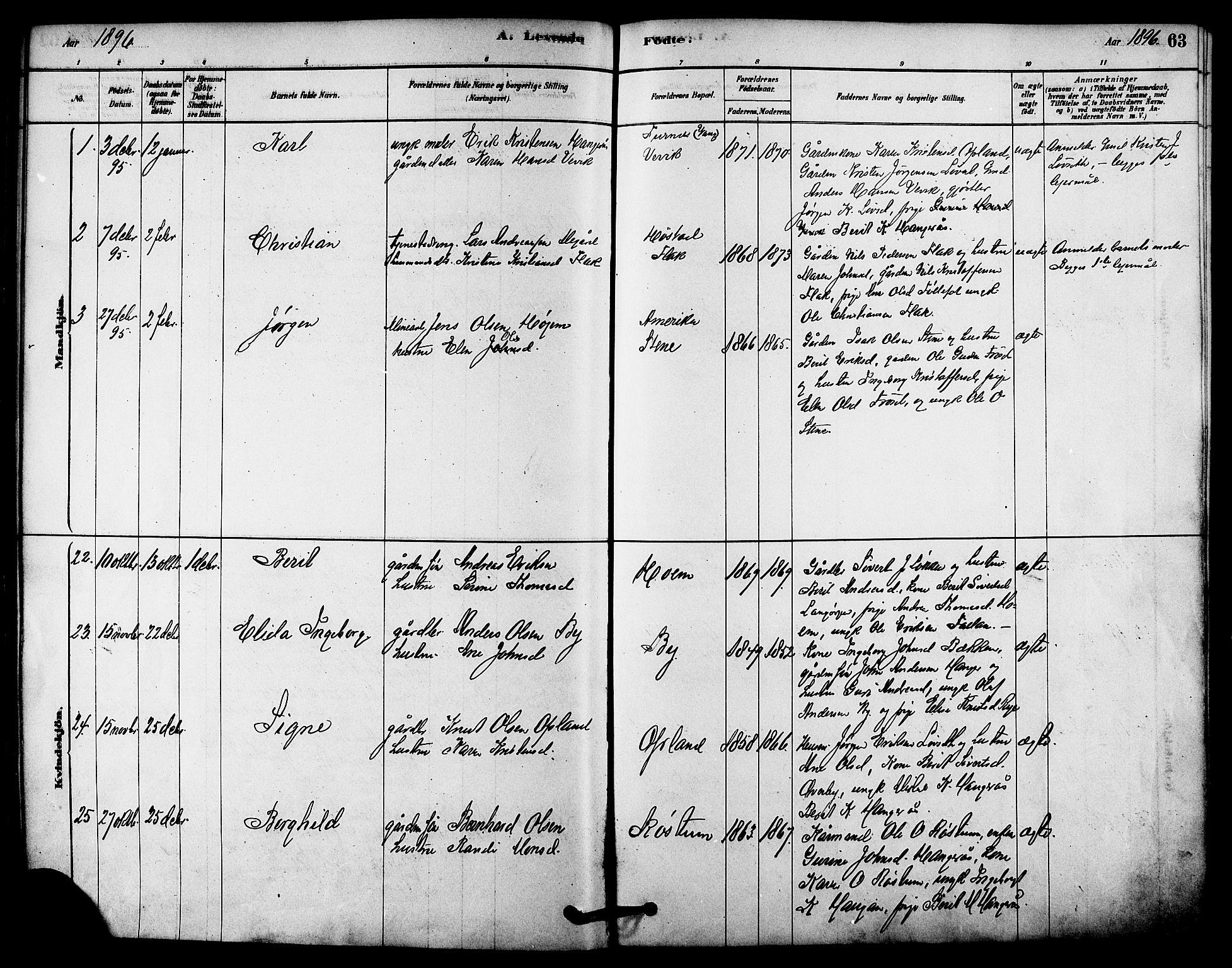 SAT, Ministerialprotokoller, klokkerbøker og fødselsregistre - Sør-Trøndelag, 612/L0378: Ministerialbok nr. 612A10, 1878-1897, s. 63