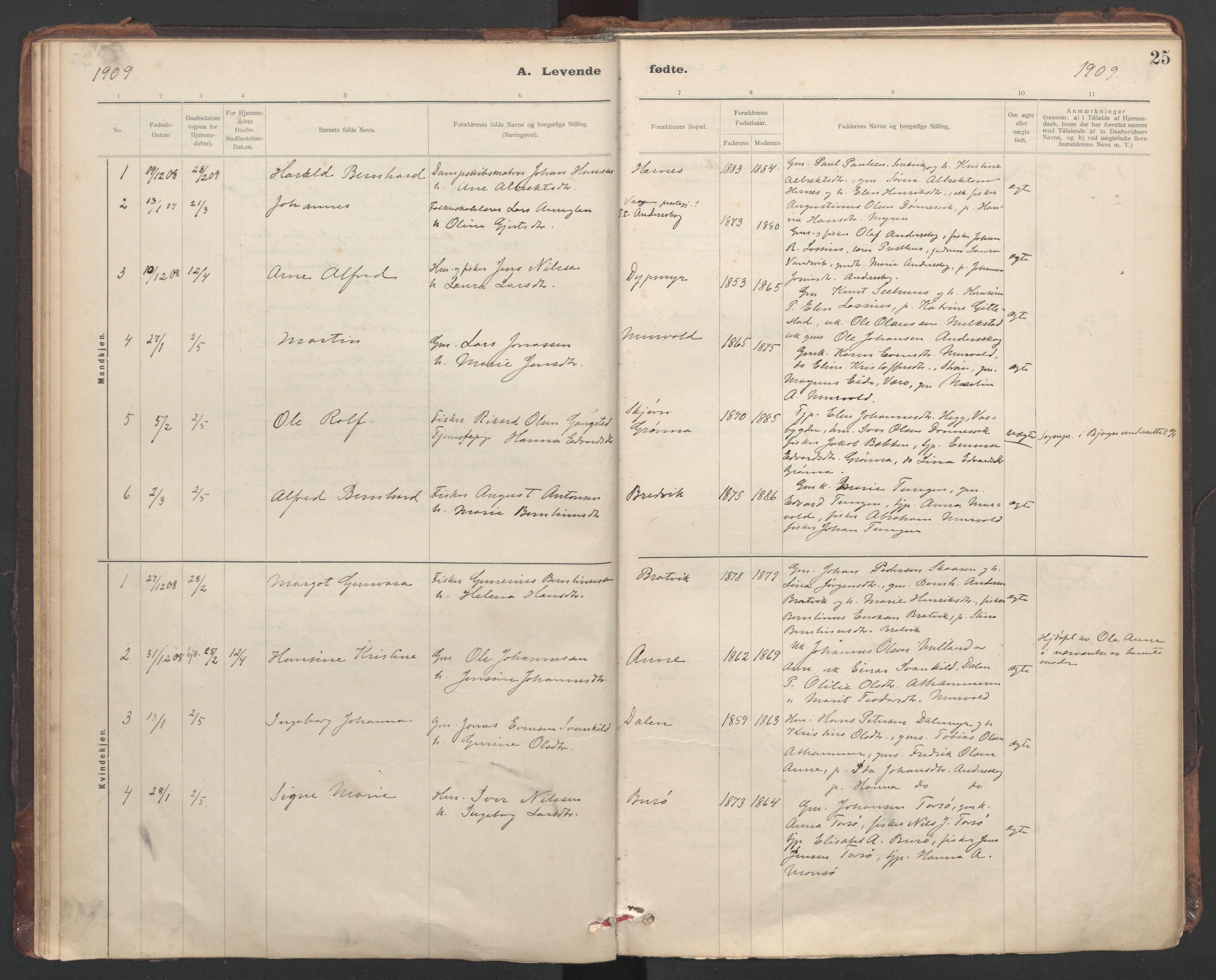 SAT, Ministerialprotokoller, klokkerbøker og fødselsregistre - Sør-Trøndelag, 635/L0552: Ministerialbok nr. 635A02, 1899-1919, s. 25