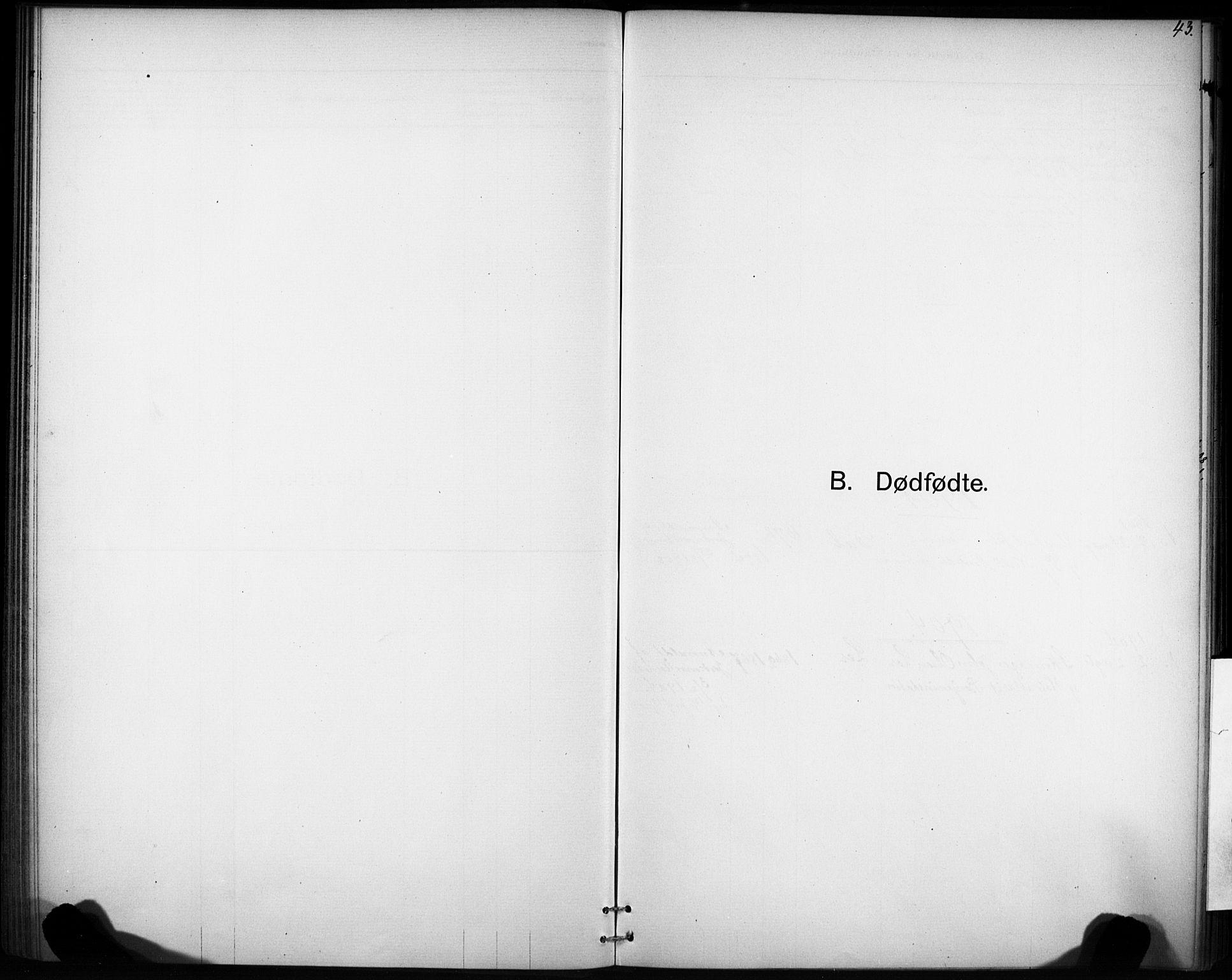 SAT, Ministerialprotokoller, klokkerbøker og fødselsregistre - Sør-Trøndelag, 693/L1119: Ministerialbok nr. 693A01, 1887-1905, s. 43
