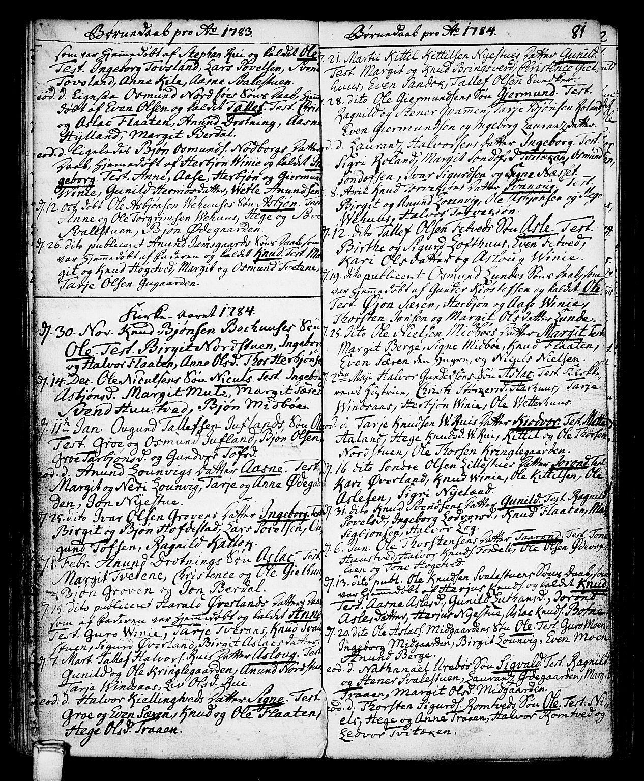 SAKO, Vinje kirkebøker, F/Fa/L0002: Ministerialbok nr. I 2, 1767-1814, s. 81