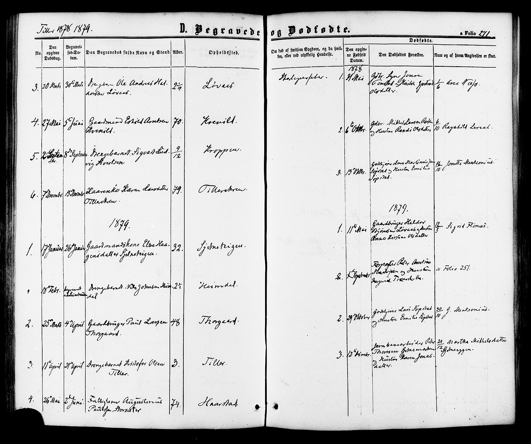 SAT, Ministerialprotokoller, klokkerbøker og fødselsregistre - Sør-Trøndelag, 618/L0443: Ministerialbok nr. 618A06 /2, 1863-1879, s. 271