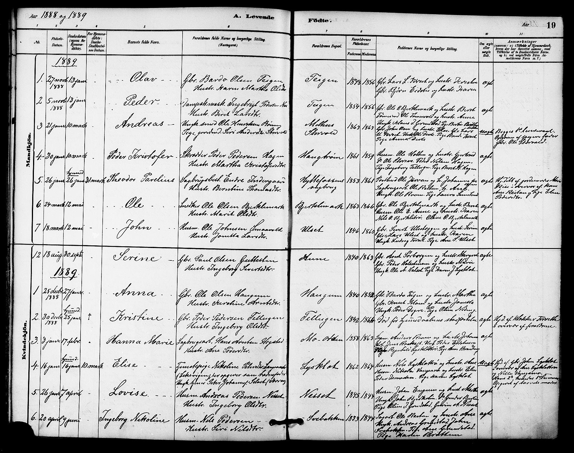 SAT, Ministerialprotokoller, klokkerbøker og fødselsregistre - Sør-Trøndelag, 618/L0444: Ministerialbok nr. 618A07, 1880-1898, s. 19