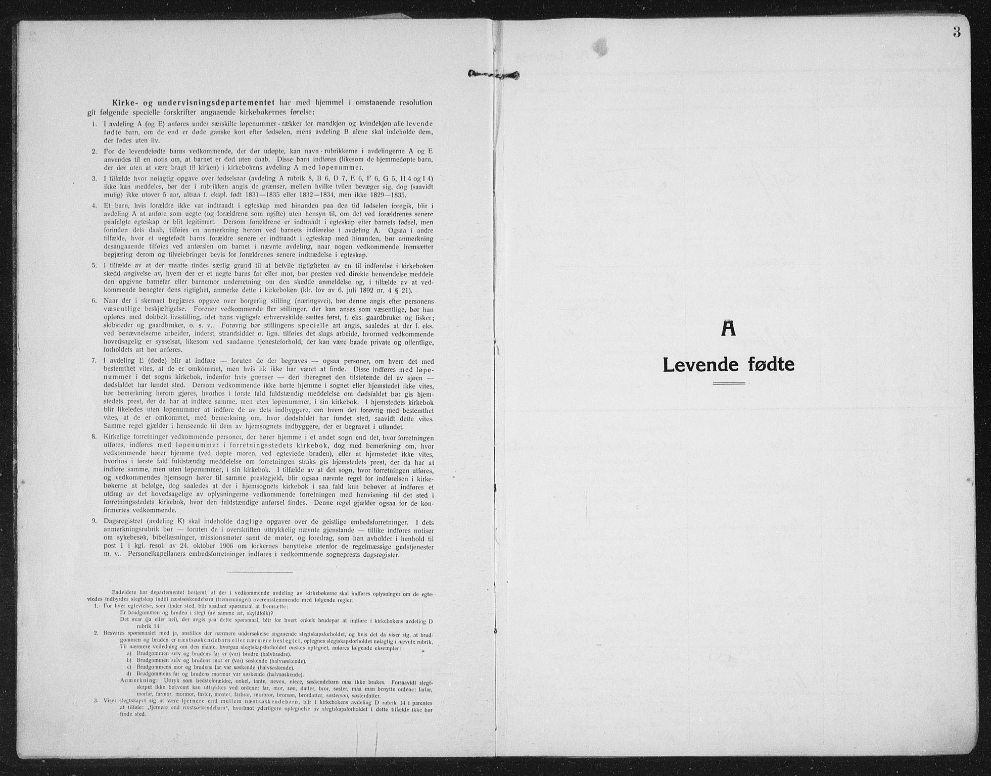 SAT, Ministerialprotokoller, klokkerbøker og fødselsregistre - Nord-Trøndelag, 709/L0083: Ministerialbok nr. 709A23, 1916-1928, s. 3