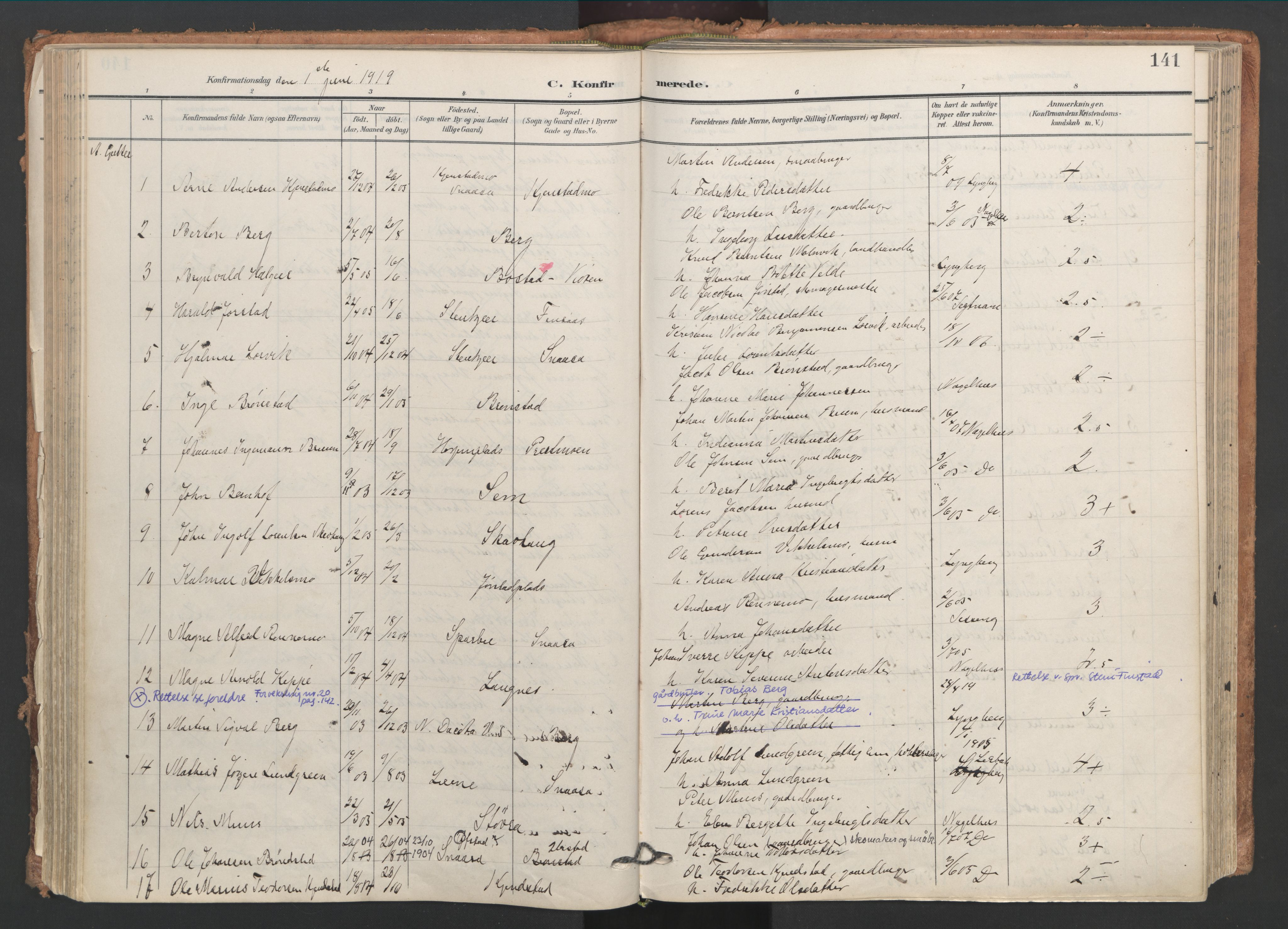SAT, Ministerialprotokoller, klokkerbøker og fødselsregistre - Nord-Trøndelag, 749/L0477: Ministerialbok nr. 749A11, 1902-1927, s. 141