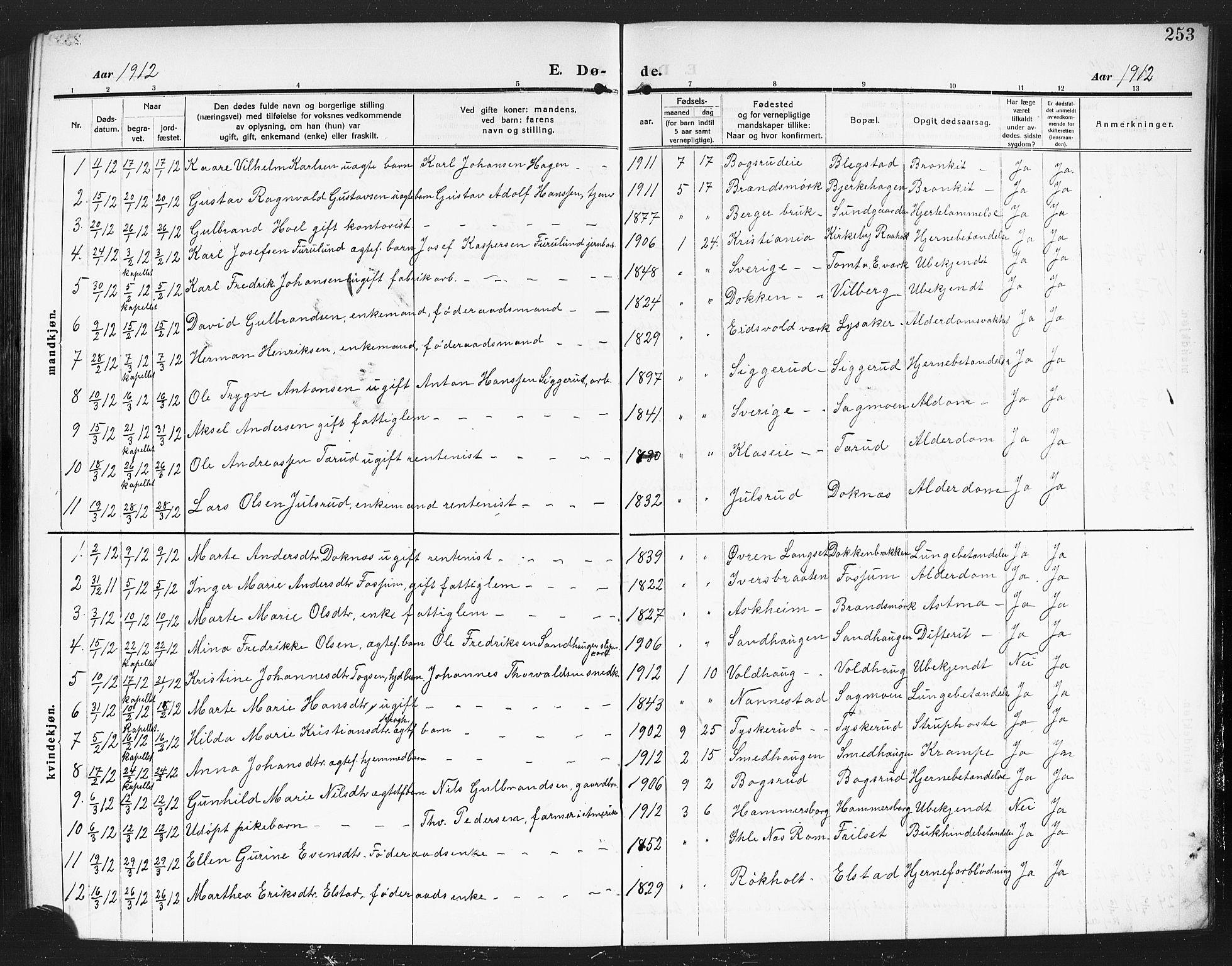 SAO, Eidsvoll prestekontor Kirkebøker, G/Ga/L0008: Klokkerbok nr. I 8, 1909-1918, s. 253