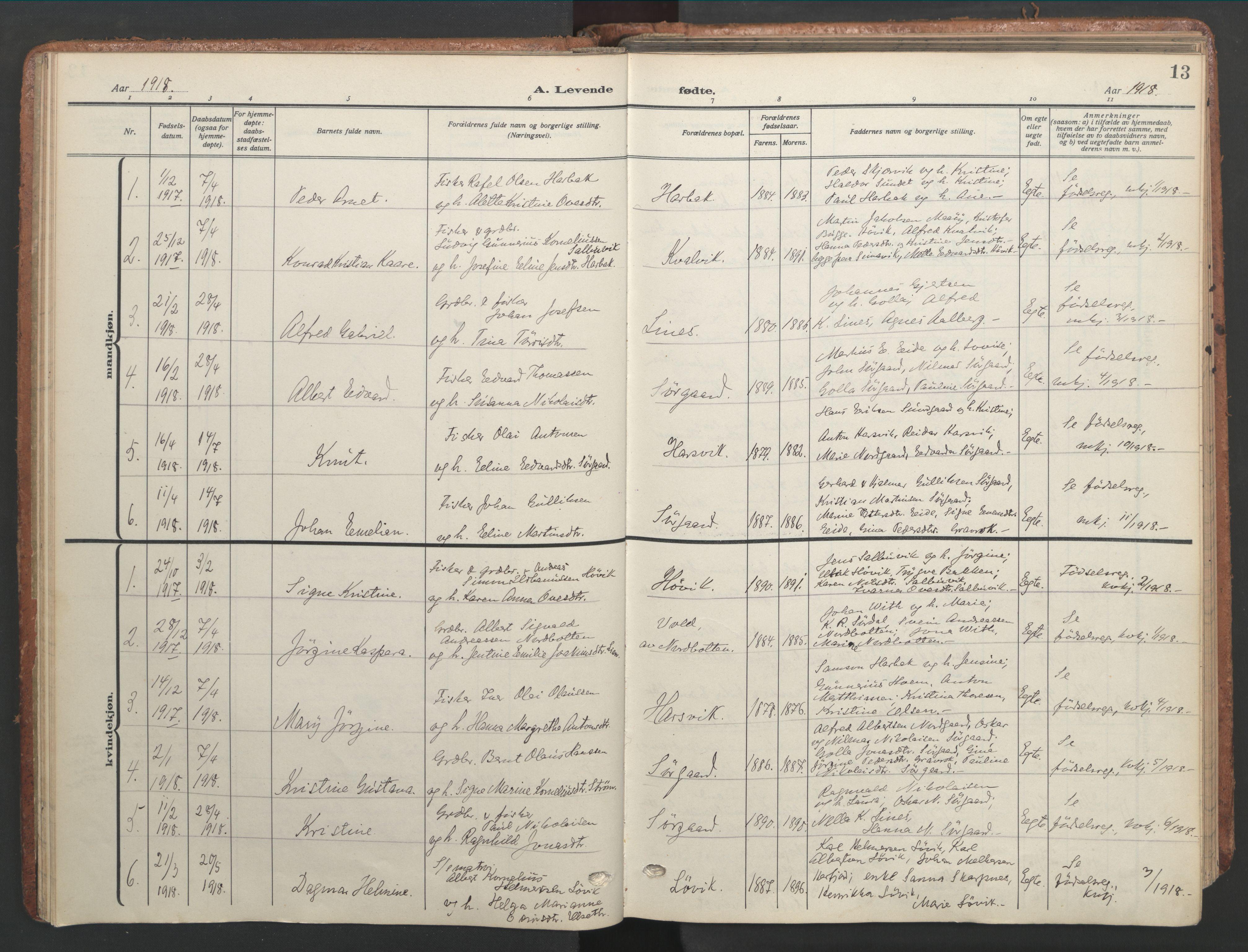 SAT, Ministerialprotokoller, klokkerbøker og fødselsregistre - Sør-Trøndelag, 656/L0694: Ministerialbok nr. 656A03, 1914-1931, s. 13