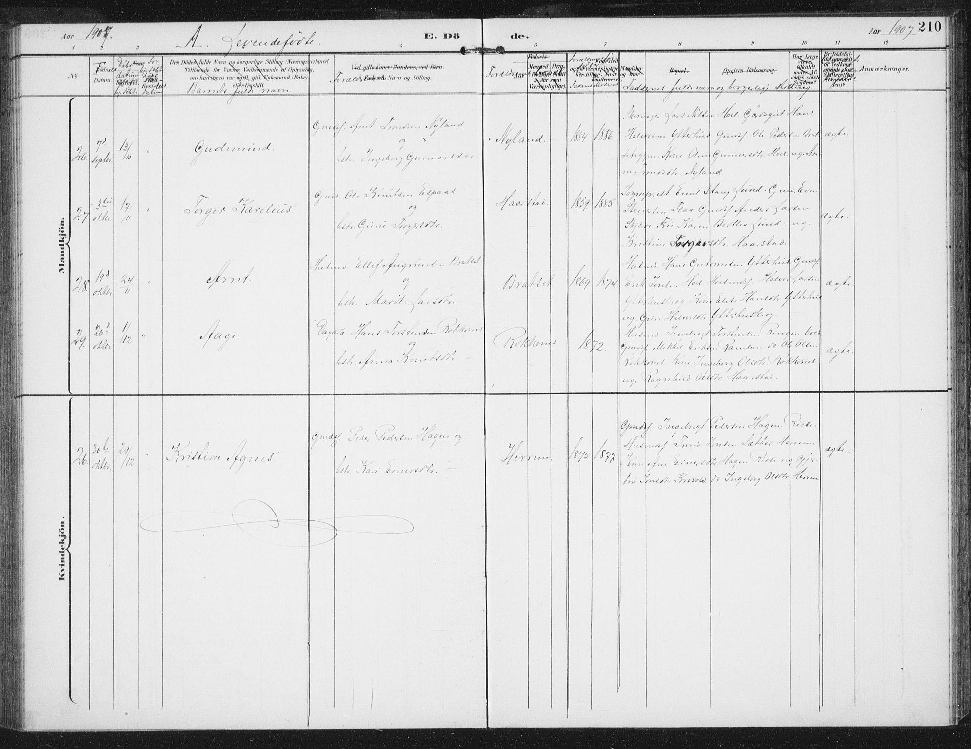 SAT, Ministerialprotokoller, klokkerbøker og fødselsregistre - Sør-Trøndelag, 674/L0872: Ministerialbok nr. 674A04, 1897-1907, s. 210
