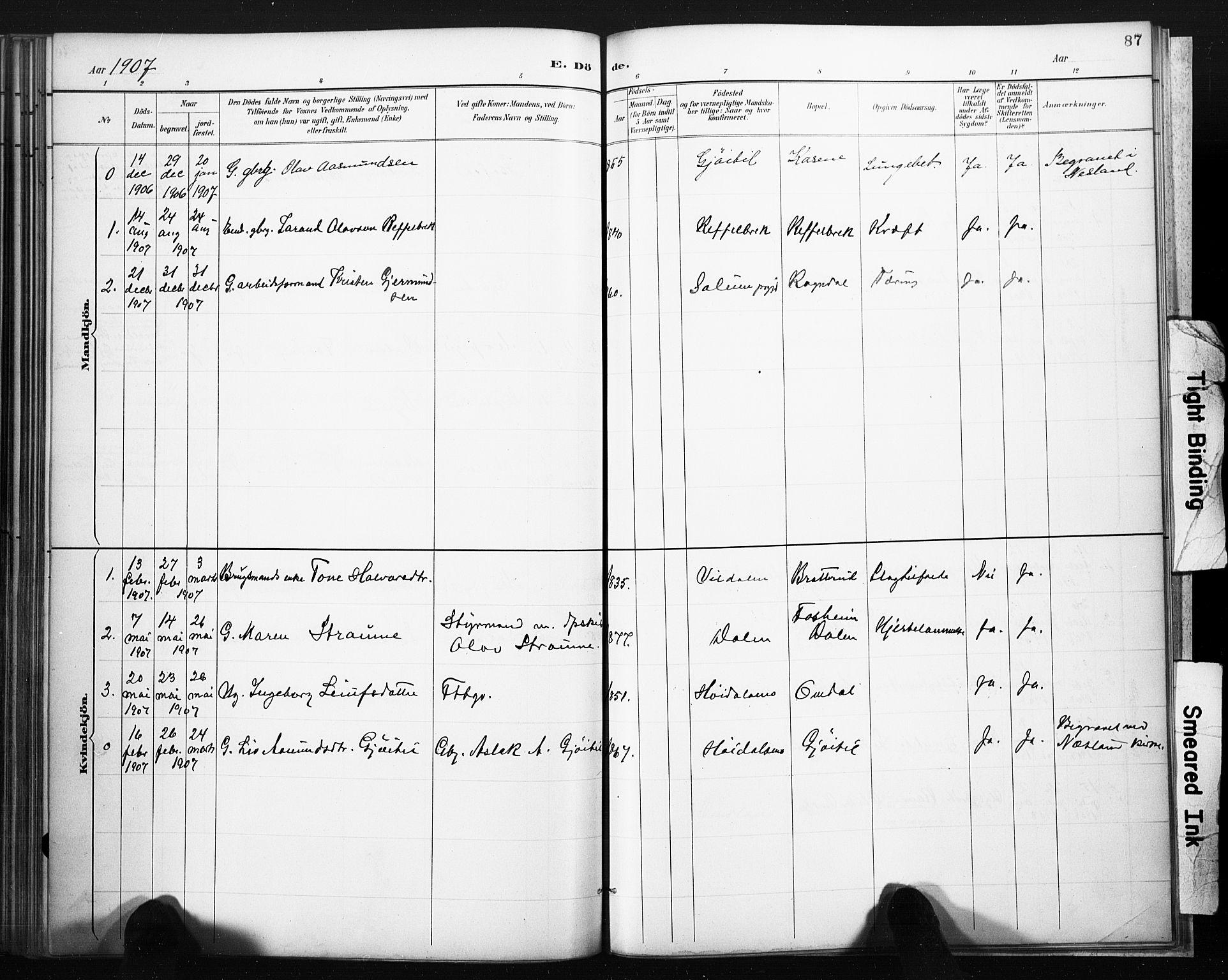 SAKO, Lårdal kirkebøker, F/Fb/L0002: Ministerialbok nr. II 2, 1887-1918, s. 87