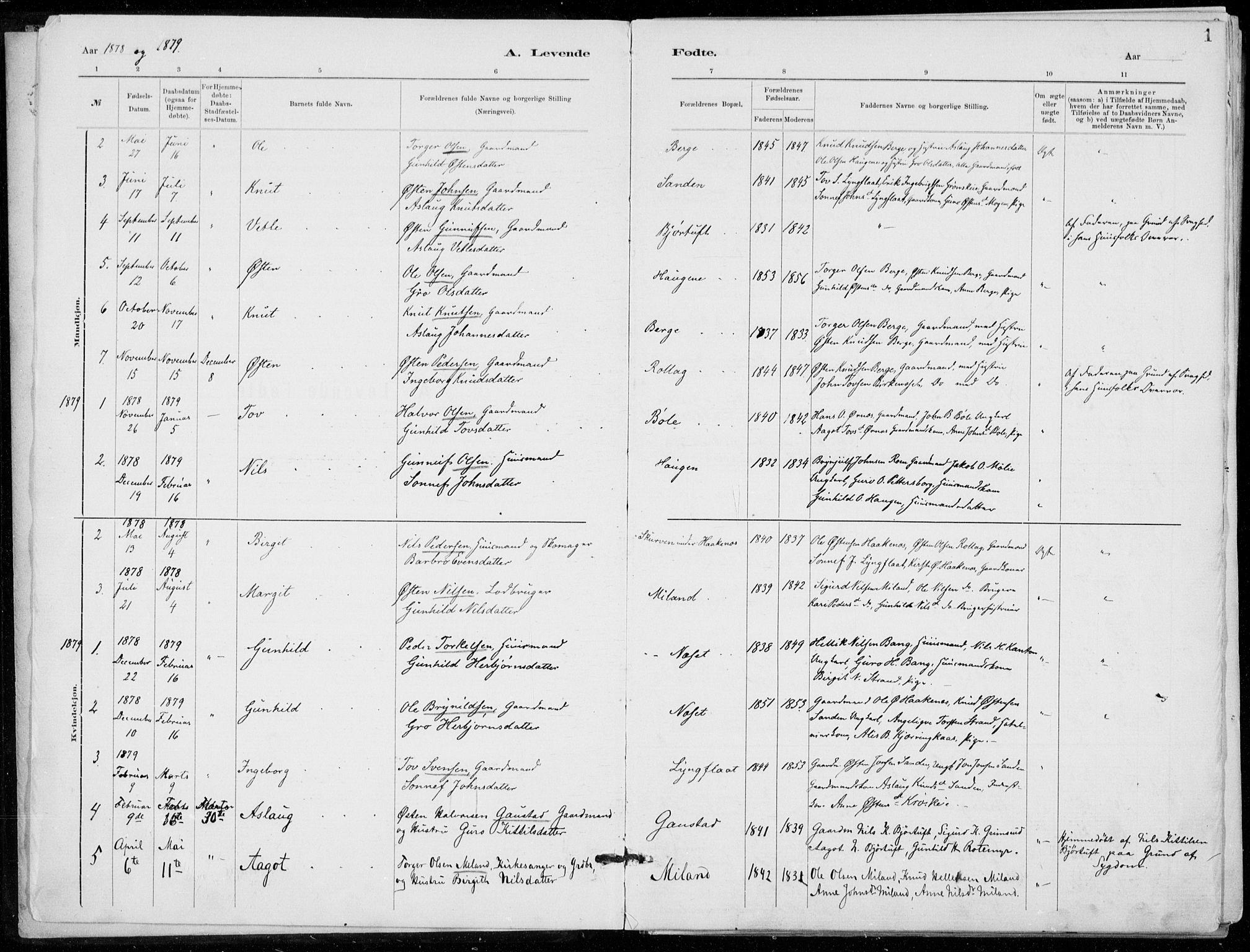 SAKO, Tinn kirkebøker, F/Fb/L0002: Ministerialbok nr. II 2, 1878-1917, s. 1