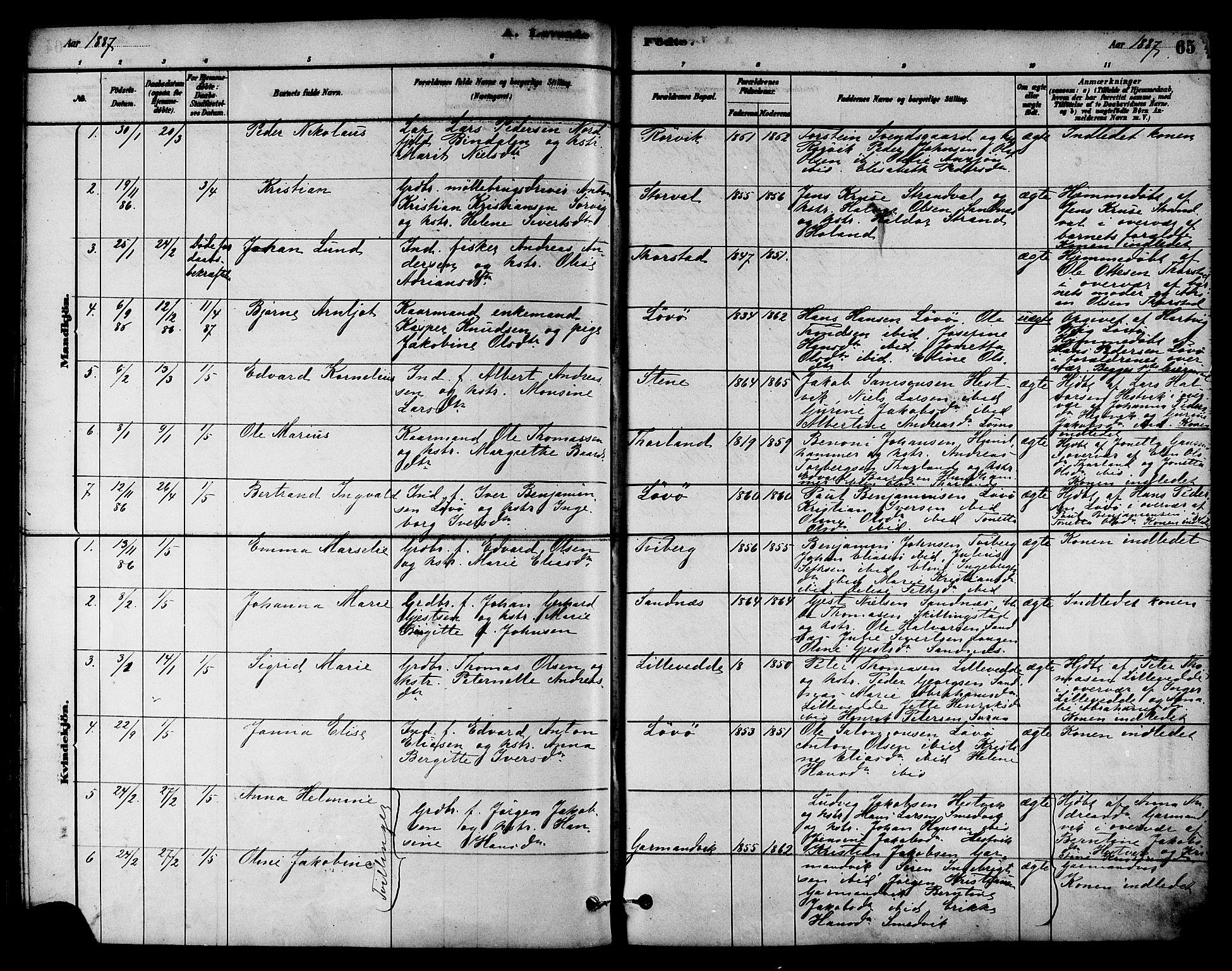 SAT, Ministerialprotokoller, klokkerbøker og fødselsregistre - Nord-Trøndelag, 784/L0672: Ministerialbok nr. 784A07, 1880-1887, s. 65