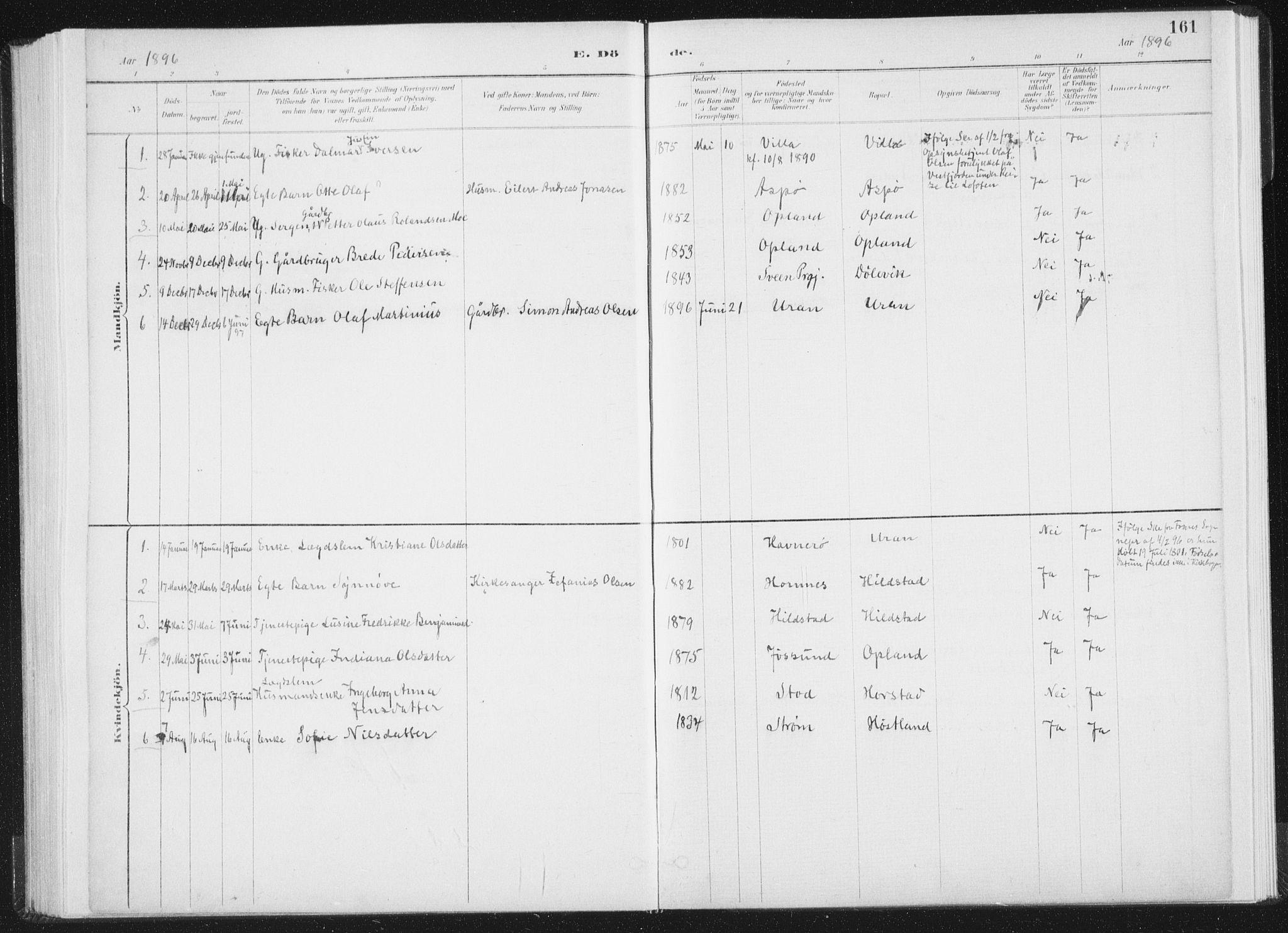 SAT, Ministerialprotokoller, klokkerbøker og fødselsregistre - Nord-Trøndelag, 771/L0597: Ministerialbok nr. 771A04, 1885-1910, s. 161
