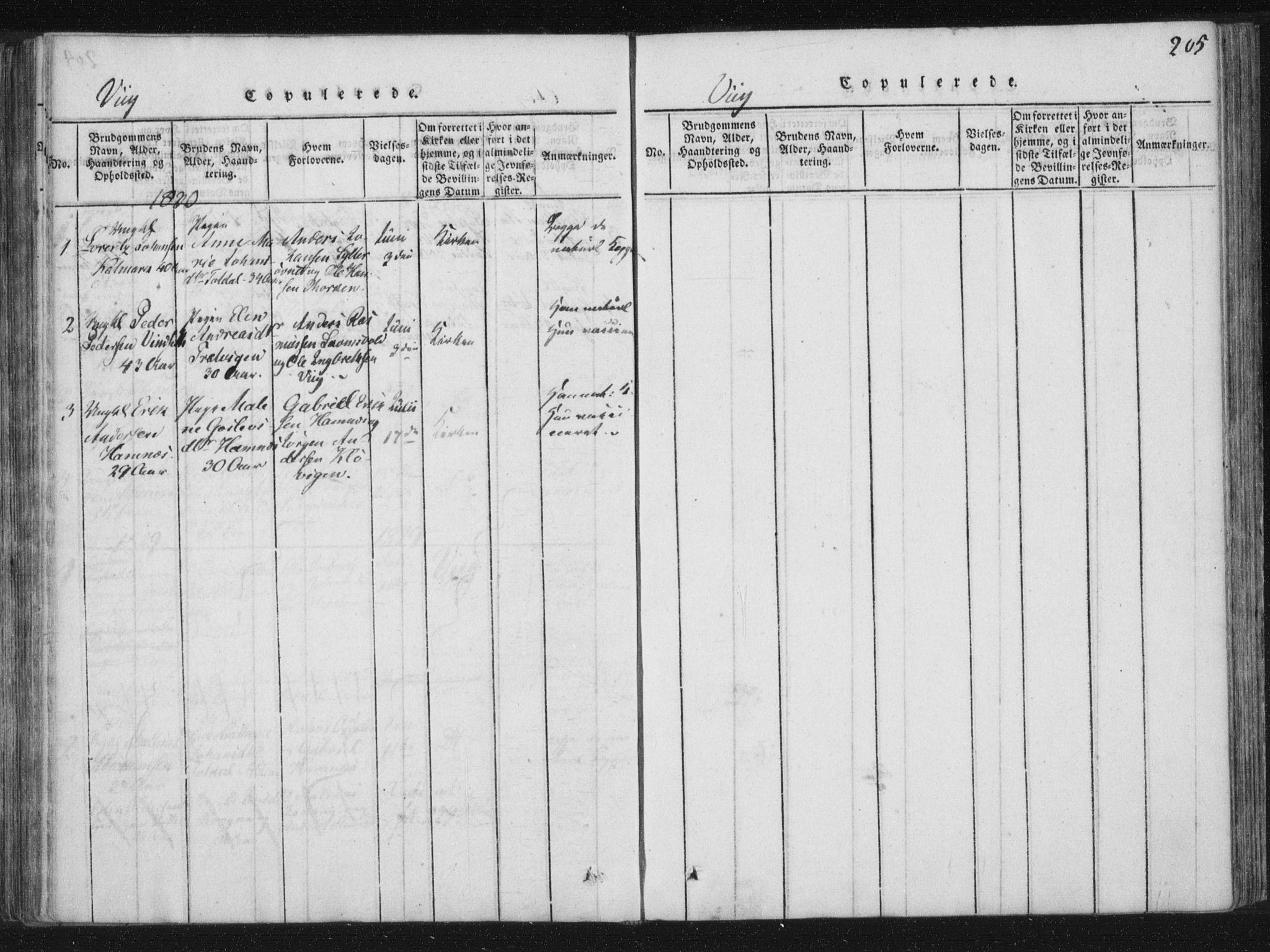 SAT, Ministerialprotokoller, klokkerbøker og fødselsregistre - Nord-Trøndelag, 773/L0609: Ministerialbok nr. 773A03 /2, 1815-1830, s. 205