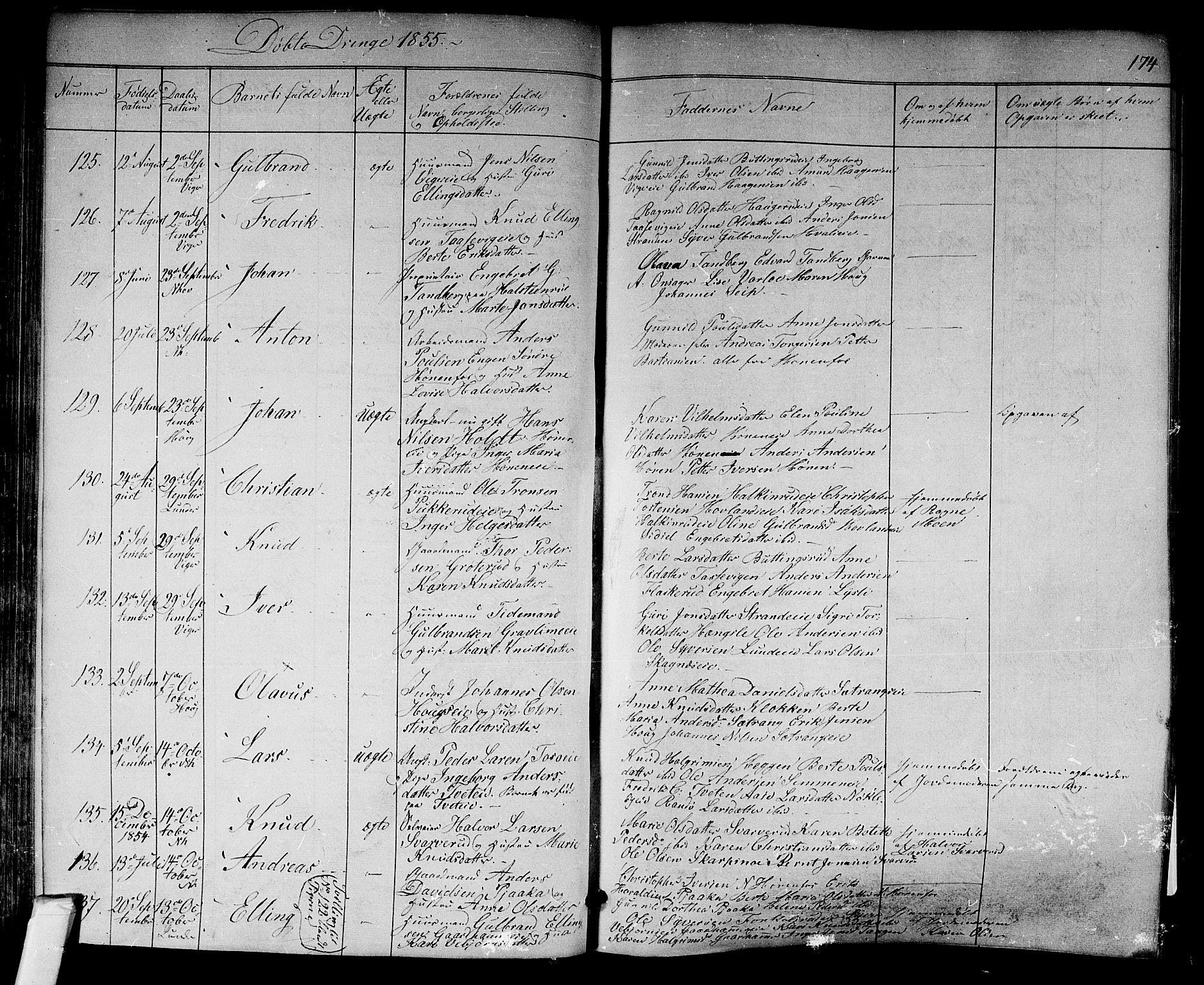 SAKO, Norderhov kirkebøker, F/Fa/L0011: Ministerialbok nr. 11, 1847-1856, s. 174