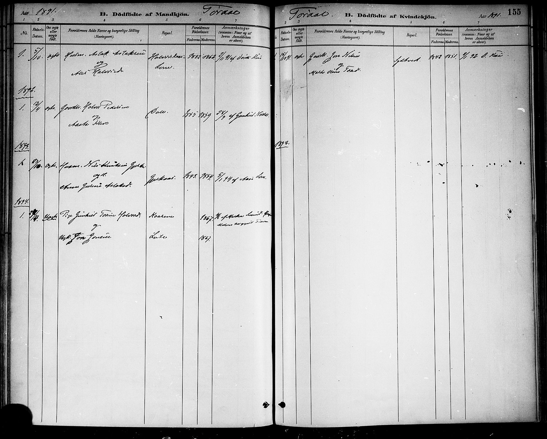 SAKO, Drangedal kirkebøker, F/Fa/L0010: Ministerialbok nr. 10 /2, 1885-1894, s. 155